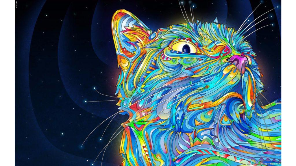 Cool Cat Abstract 4K Wallpaper | Free 4K Wallpaper