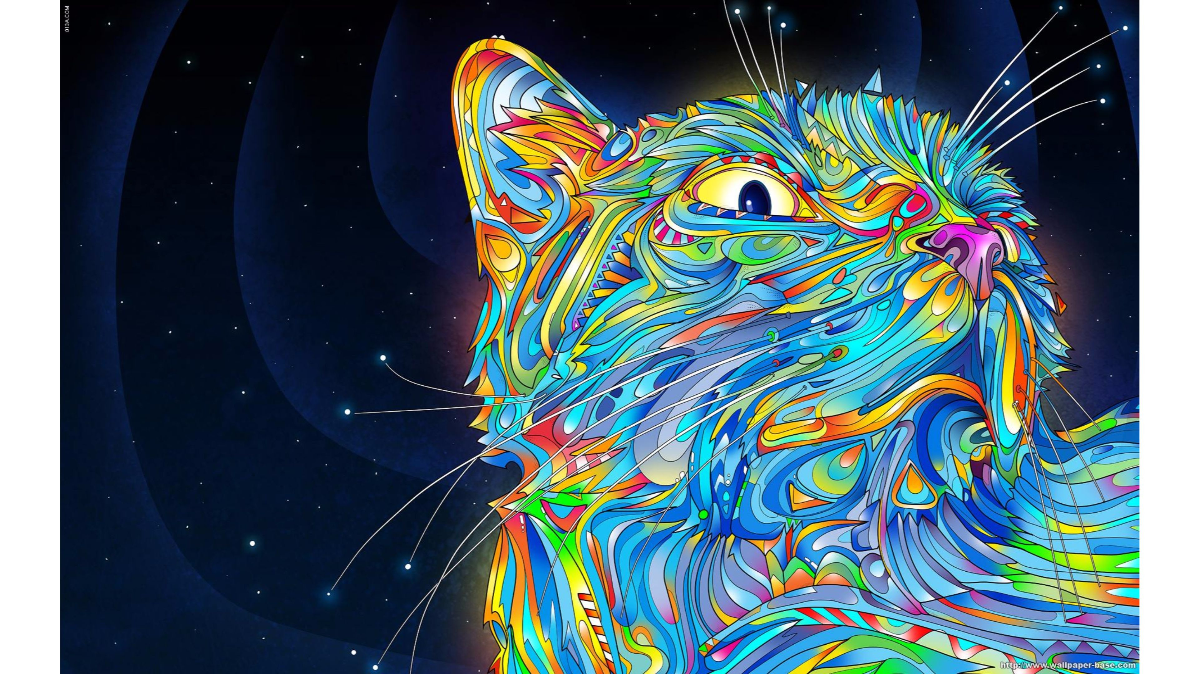 Cool Cat Abstract 4K Wallpaper | Free 4K Wallpaper