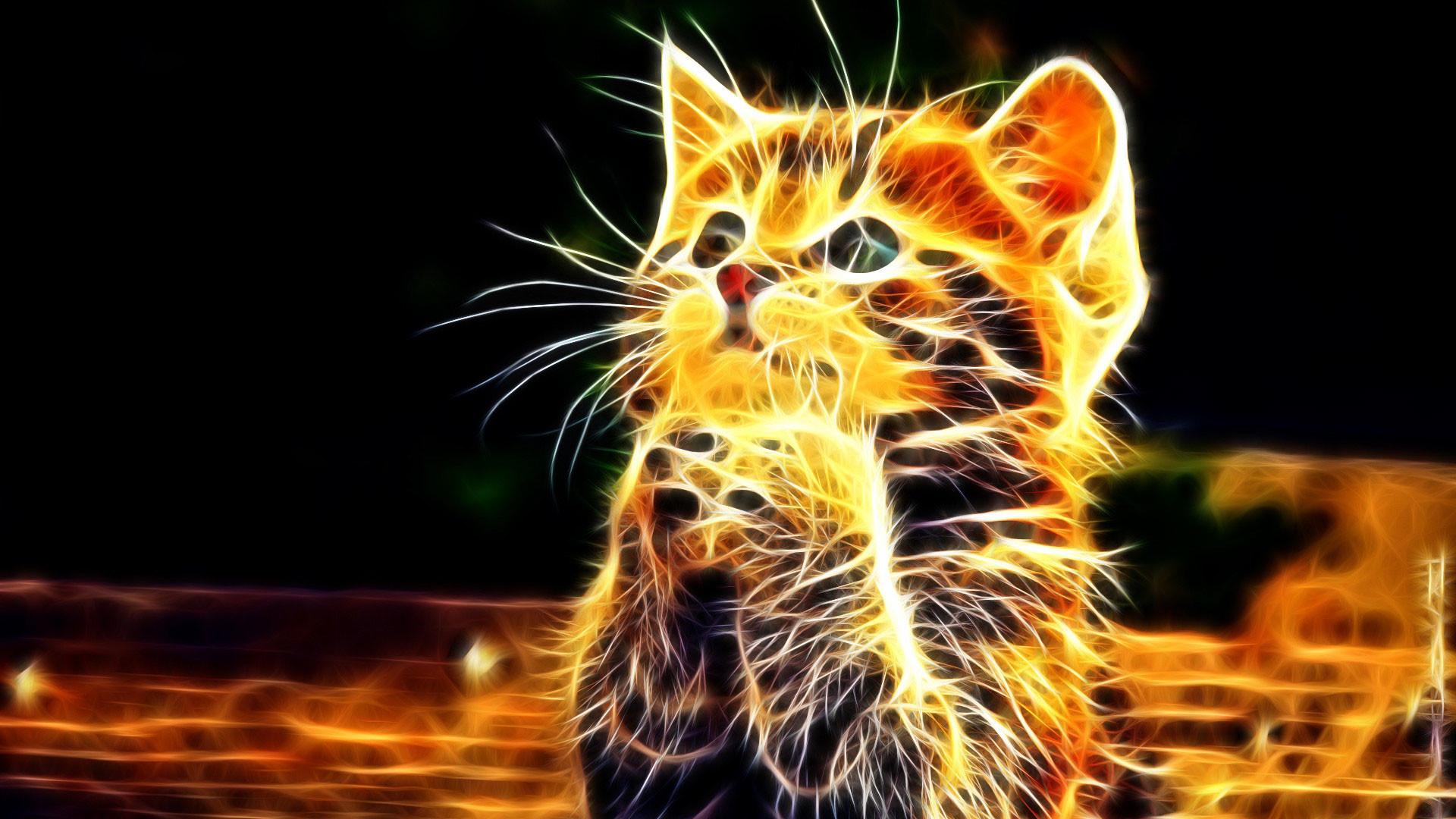 hd pics photos abstract 3d little cat n fire wallpaper
