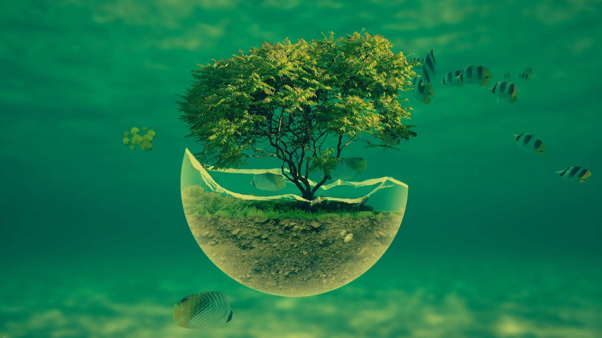 … 1188_3d_abstract 1920×1080-underwater-tree-widescreen-hd-abstract -desktop-wallpaper …