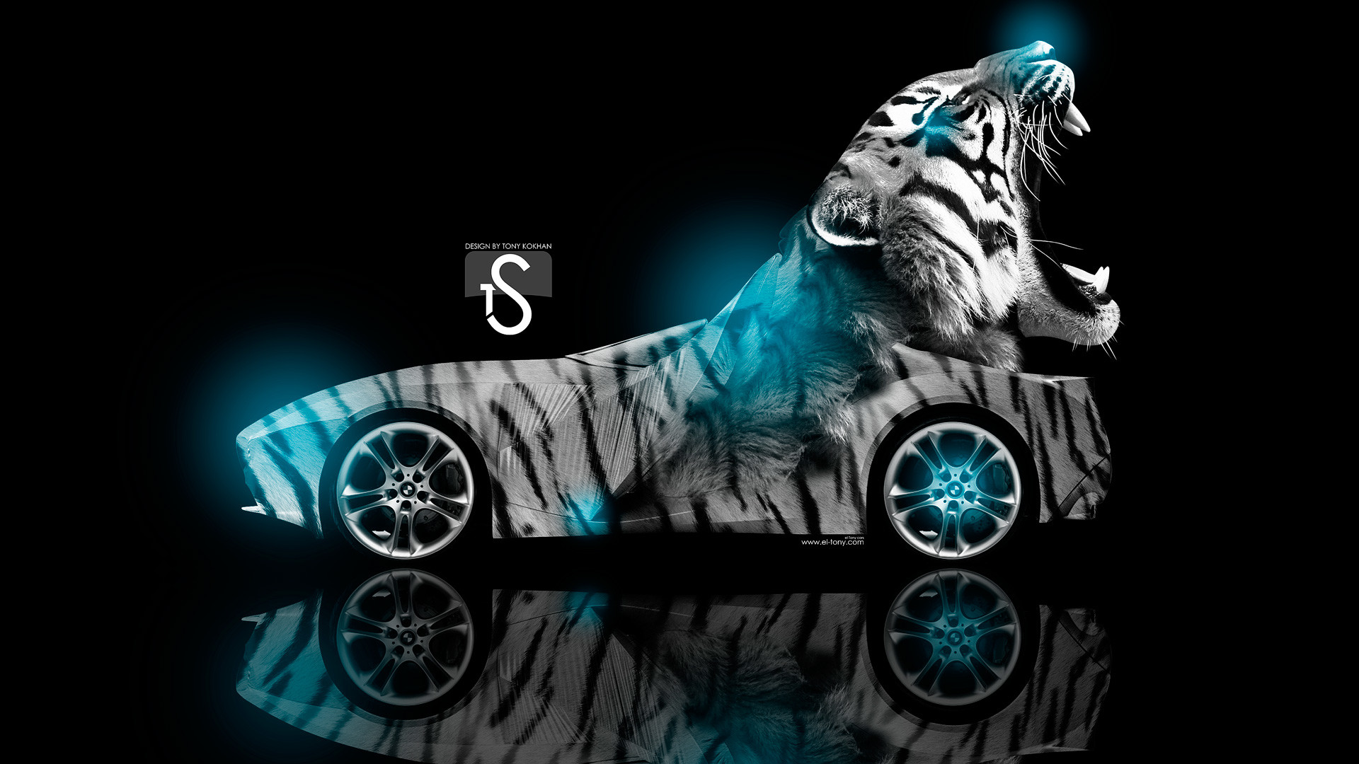 Cool Animal Wallpaper Light Blue Tiger Quotes