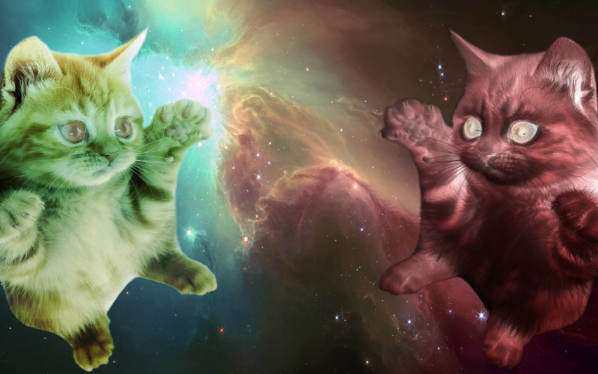 My collection of OC (outerspace cats) These have been fun to do. I will  keep making them and adding them to the album later.