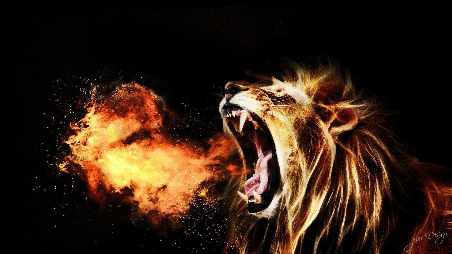 lion roar wallpaper hd