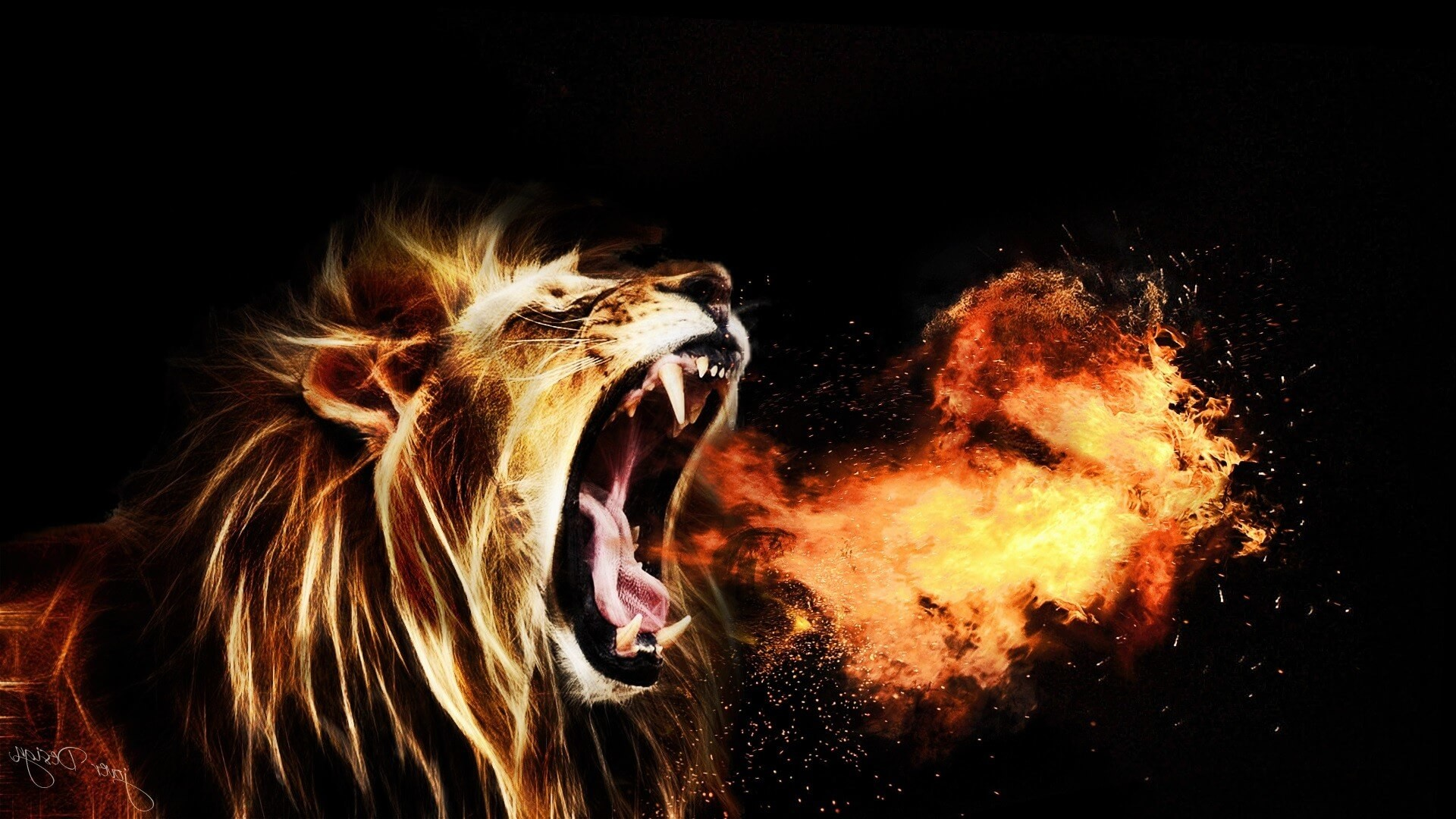 … Roaring Lion Hd Wallpapers