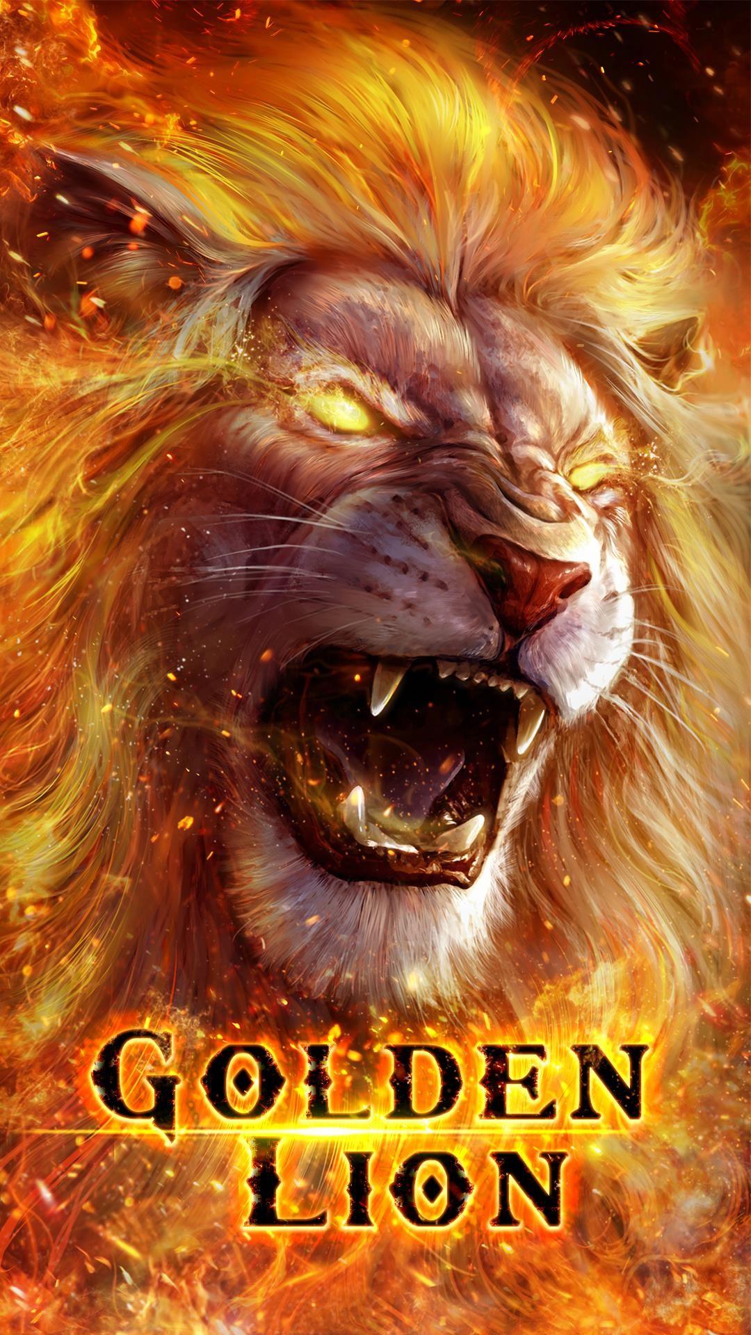 Explore Lions Live, Roaring Lion, and more!