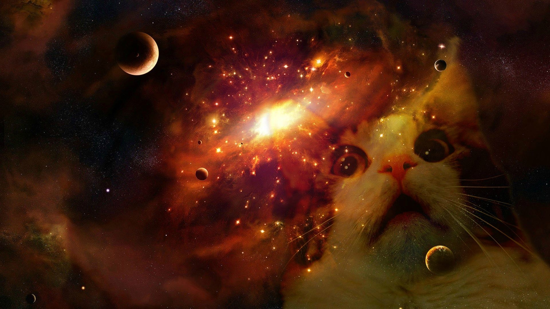 Space cat (my first attempt at Photoshop) …
