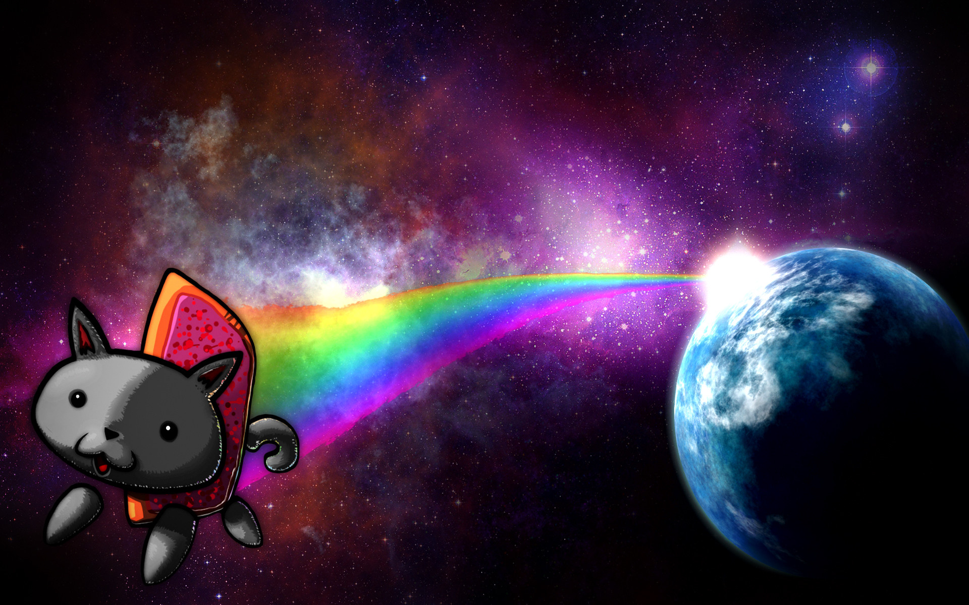 Space Cat Wallpaper Picture …