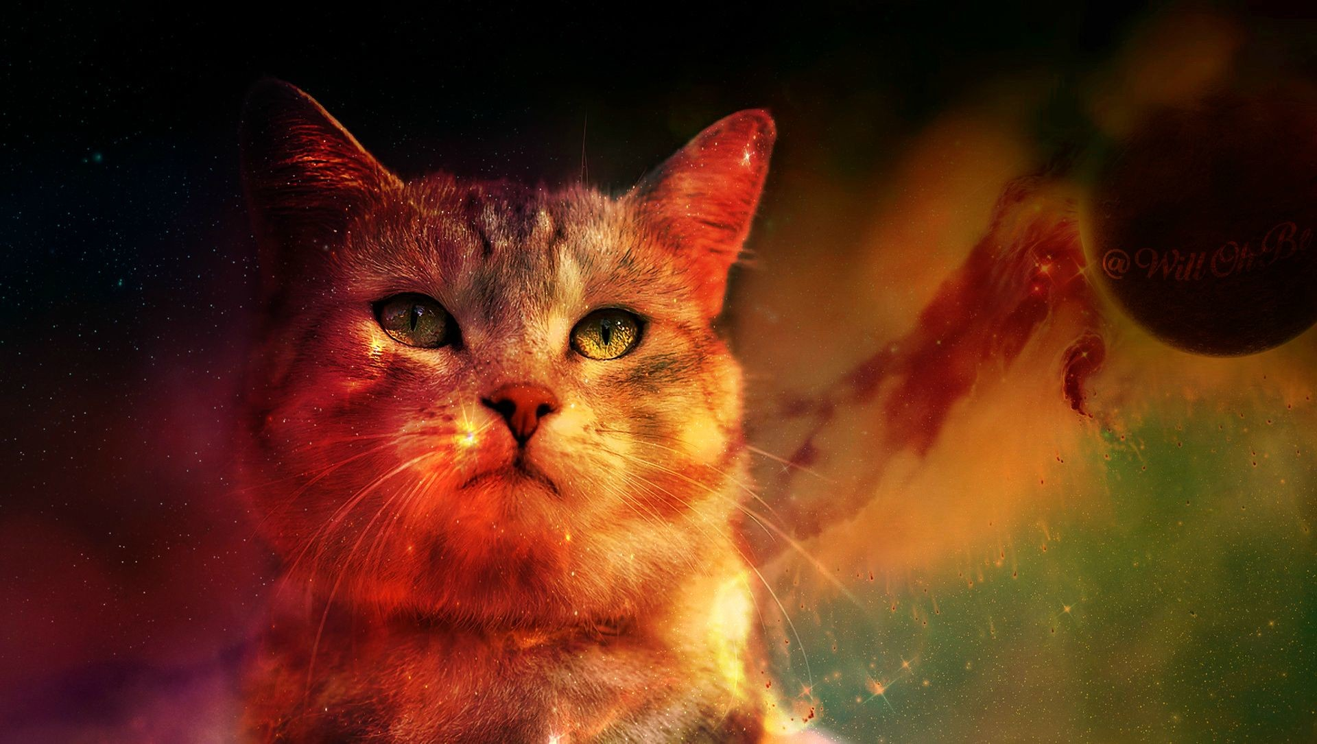 The Majestic Space Cat …