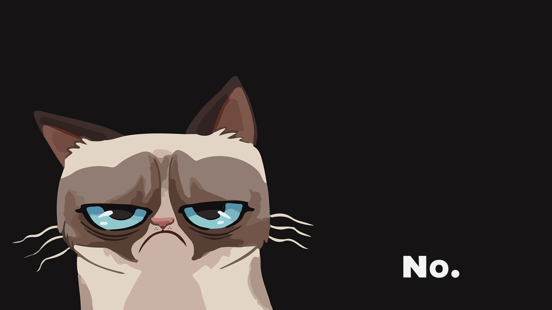HQ Definition Grumpy Cat Photos 247.87 Kb, NMgnCP