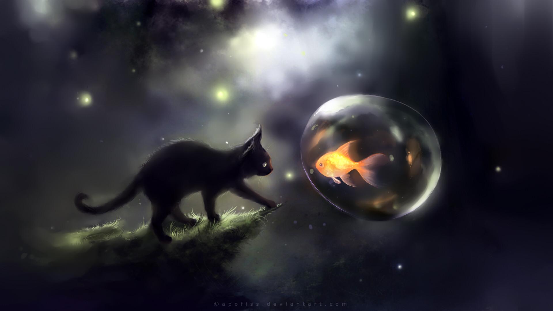 Space Cats HD Wallpaper – WallpaperSafari