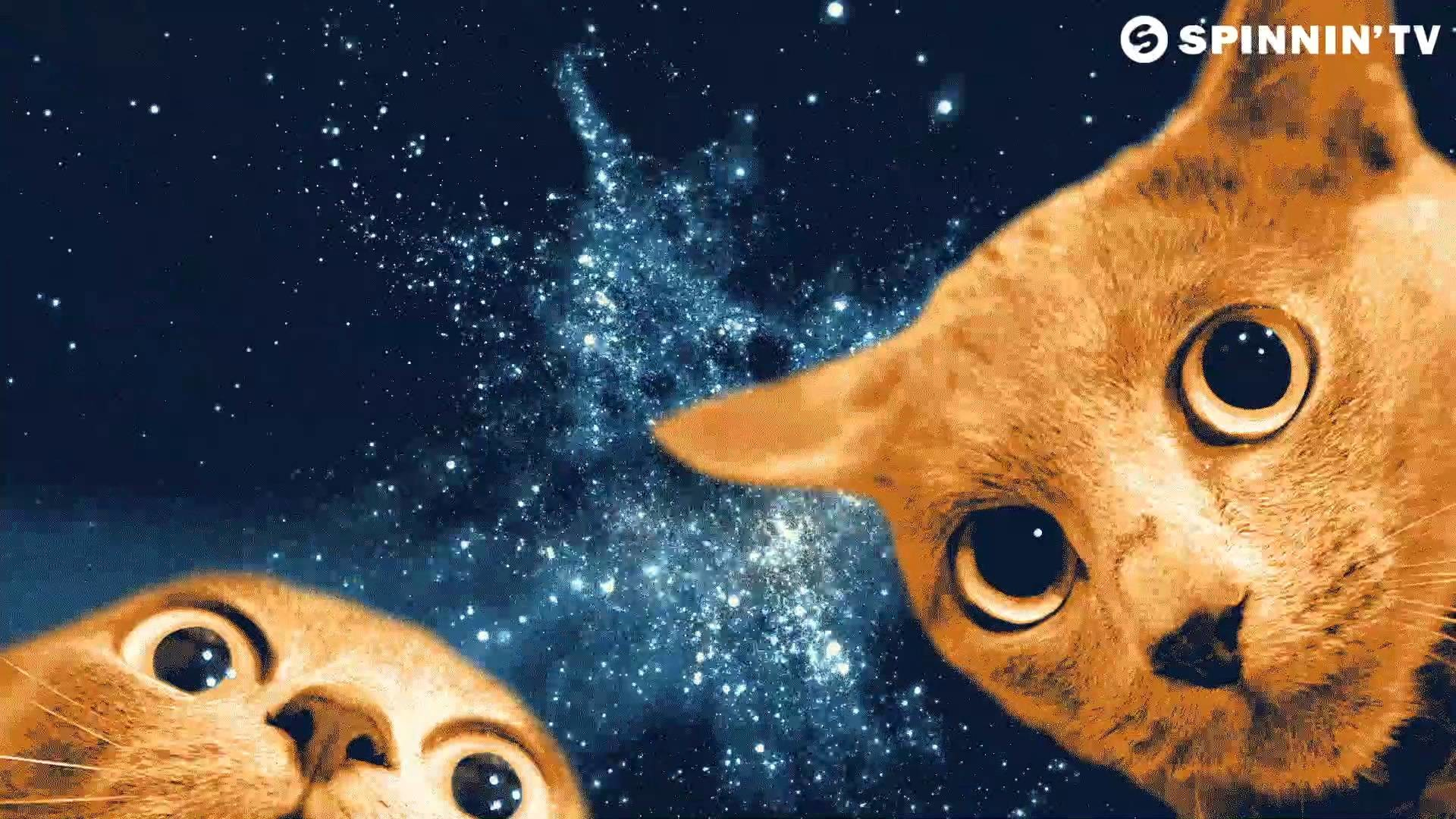 Humor Earth <b>Cats</b> Cosmonauts <b>Space<