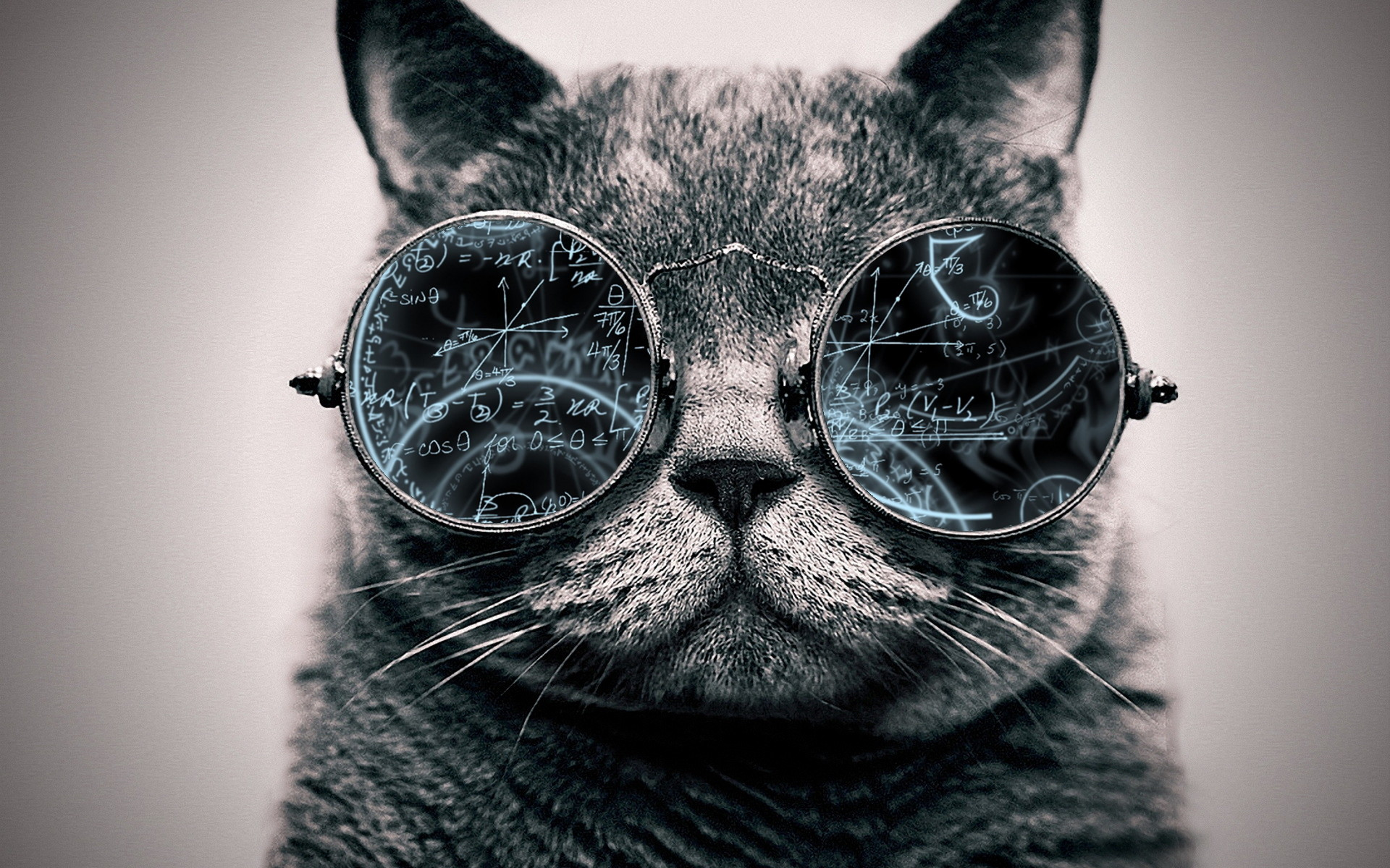Cool Cat: Genius by ToValhalla Cool Cat: Genius by ToValhalla