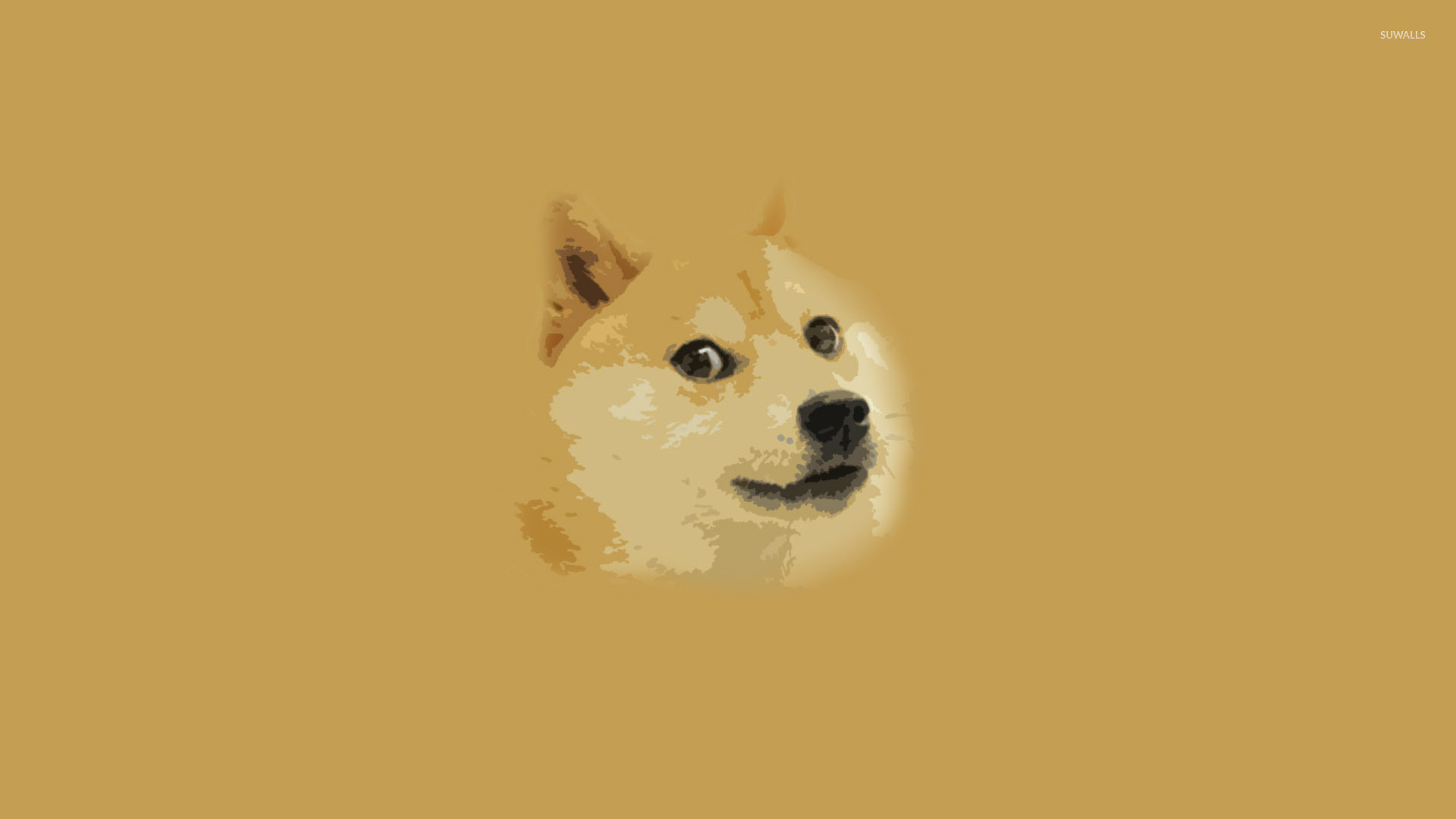 Doge wallpaper 1920×1080