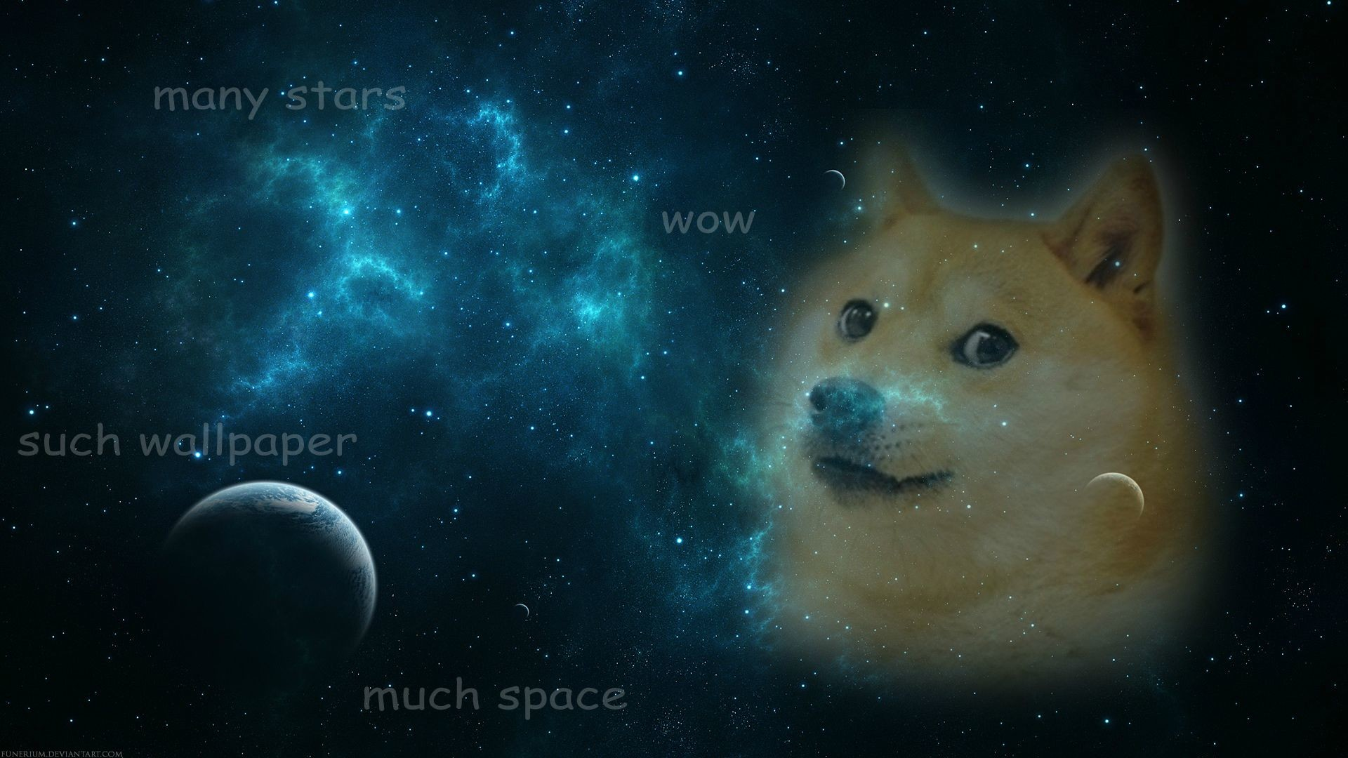 WOW DOGE CALM MUCH SHIBE | DOGE | Pinterest | Much! and Doge