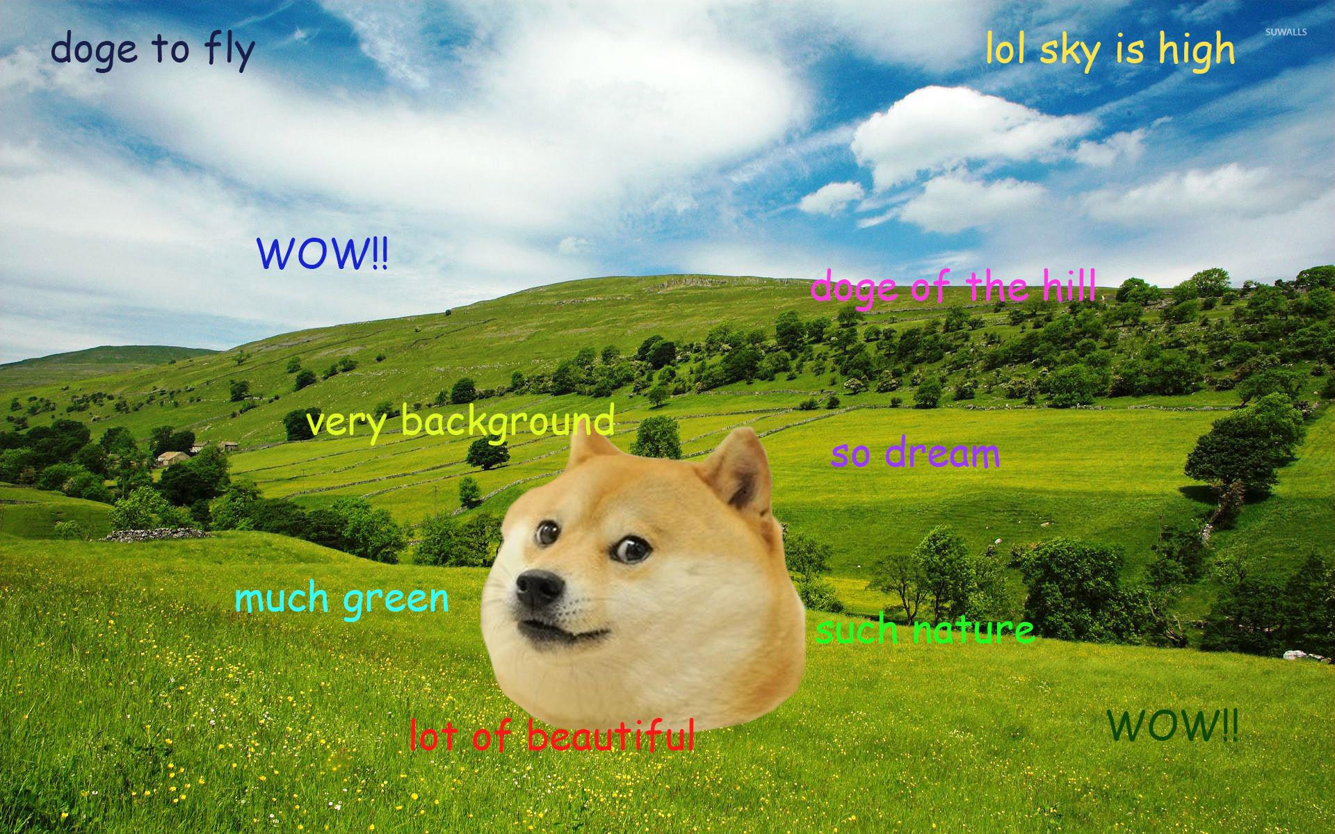 Doge [7] wallpaper jpg