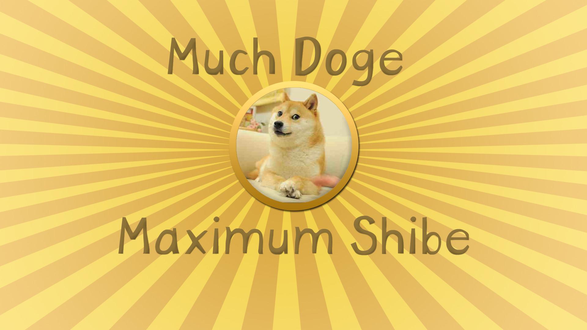 Doge Meme Wallpaper | Funny Cat & Dog Pictures