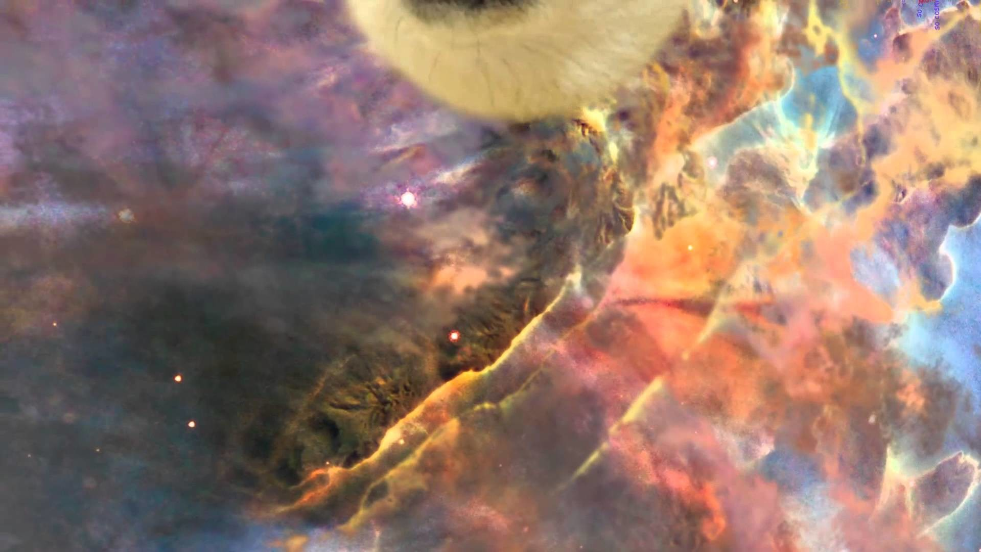 Space Doge Meme Wallpaper