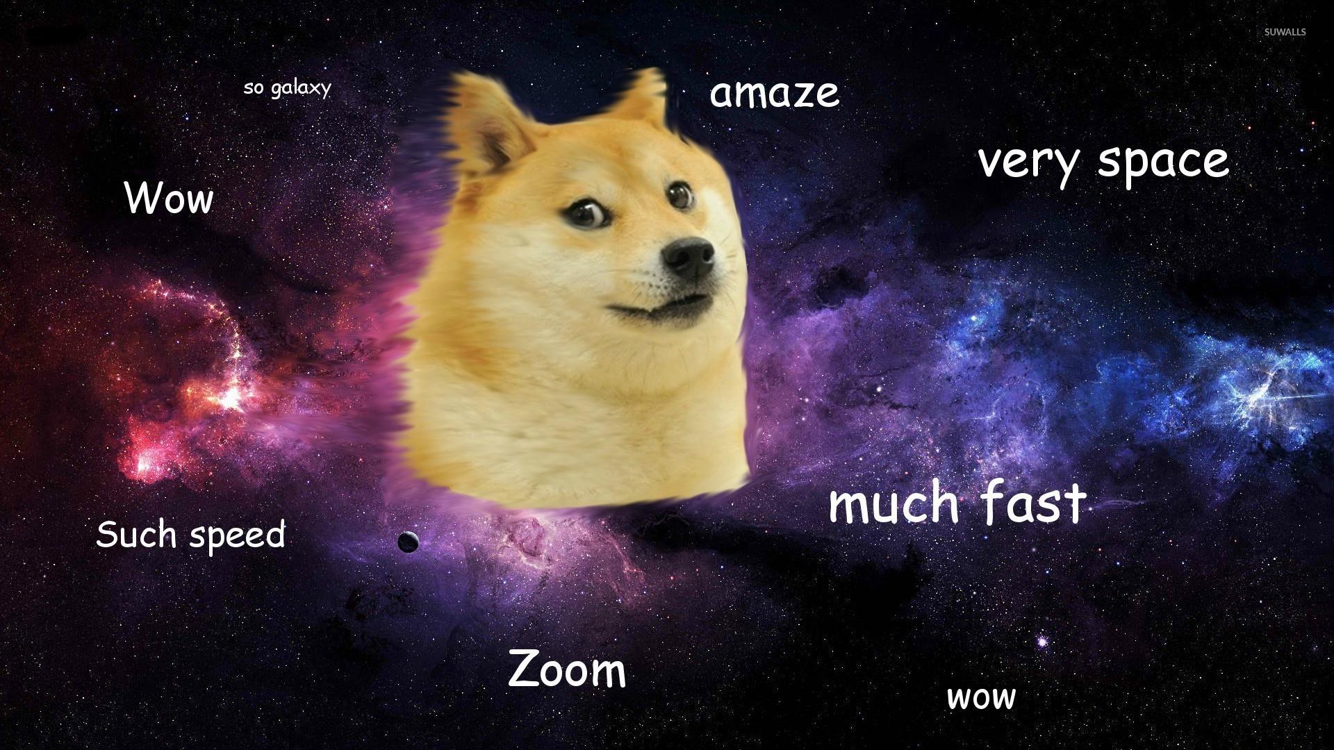 Doge Meme Wallpaper