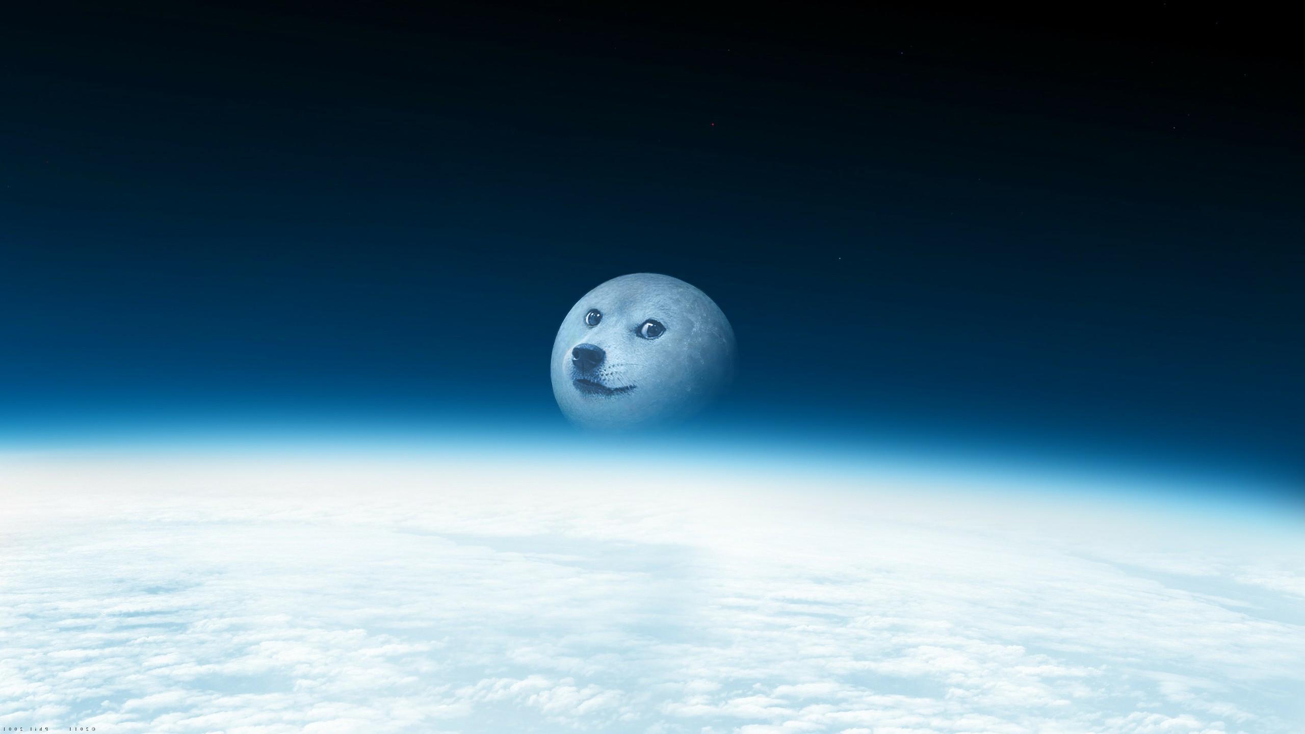 Doge Moon version w6 2560×1440
