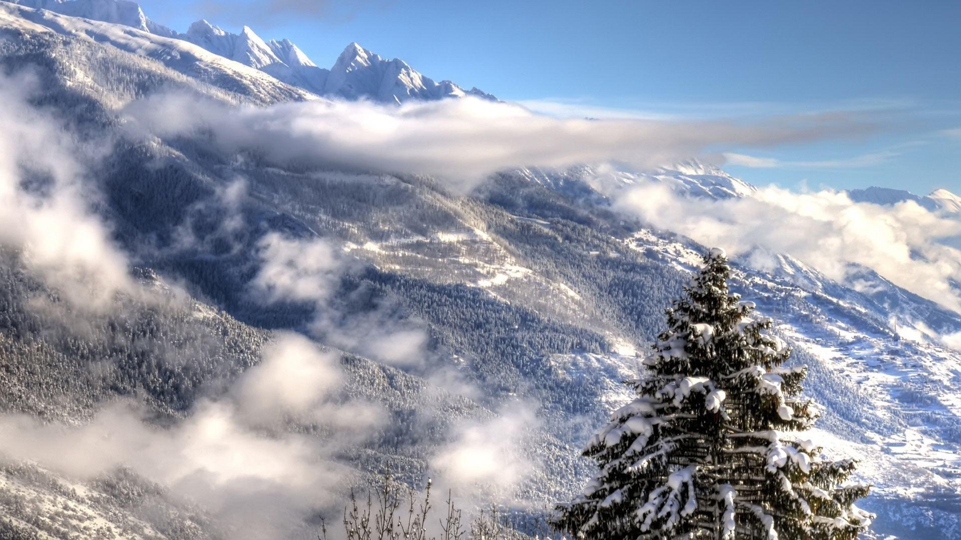Wallpapers Backgrounds – Desktop backgrounds Animal Life Nature Winter Alps
