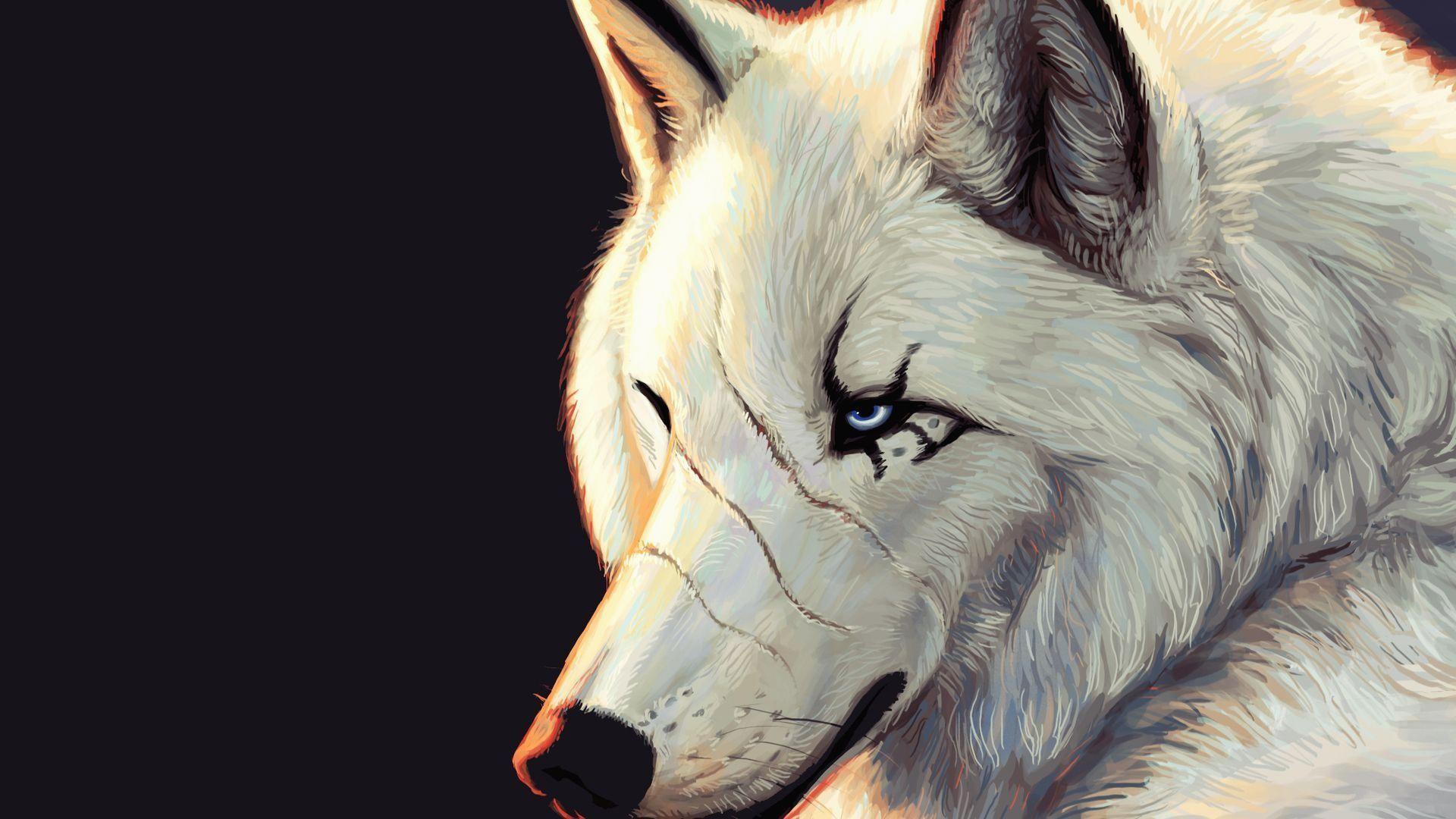Wolf-Desktop-Backgrounds