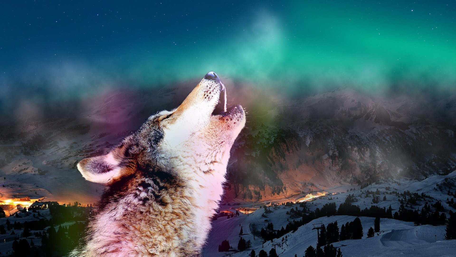 Howling Tag – Auroras Animals Howling Wolf Aurora Wolves Sky Nature  Wallpaper Desktop for HD 16