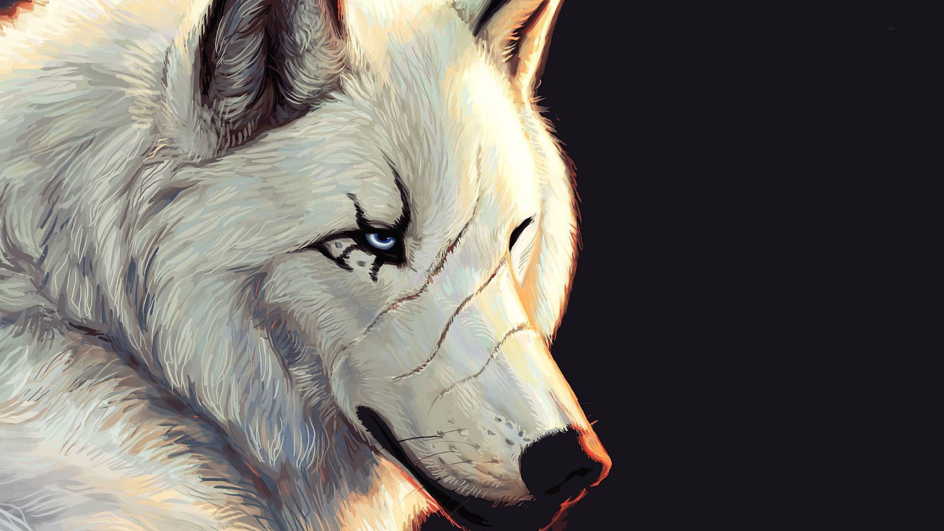 hd pics photos beautiful 3d animated wolf painting attractive hd quality  desktop background wallpaper