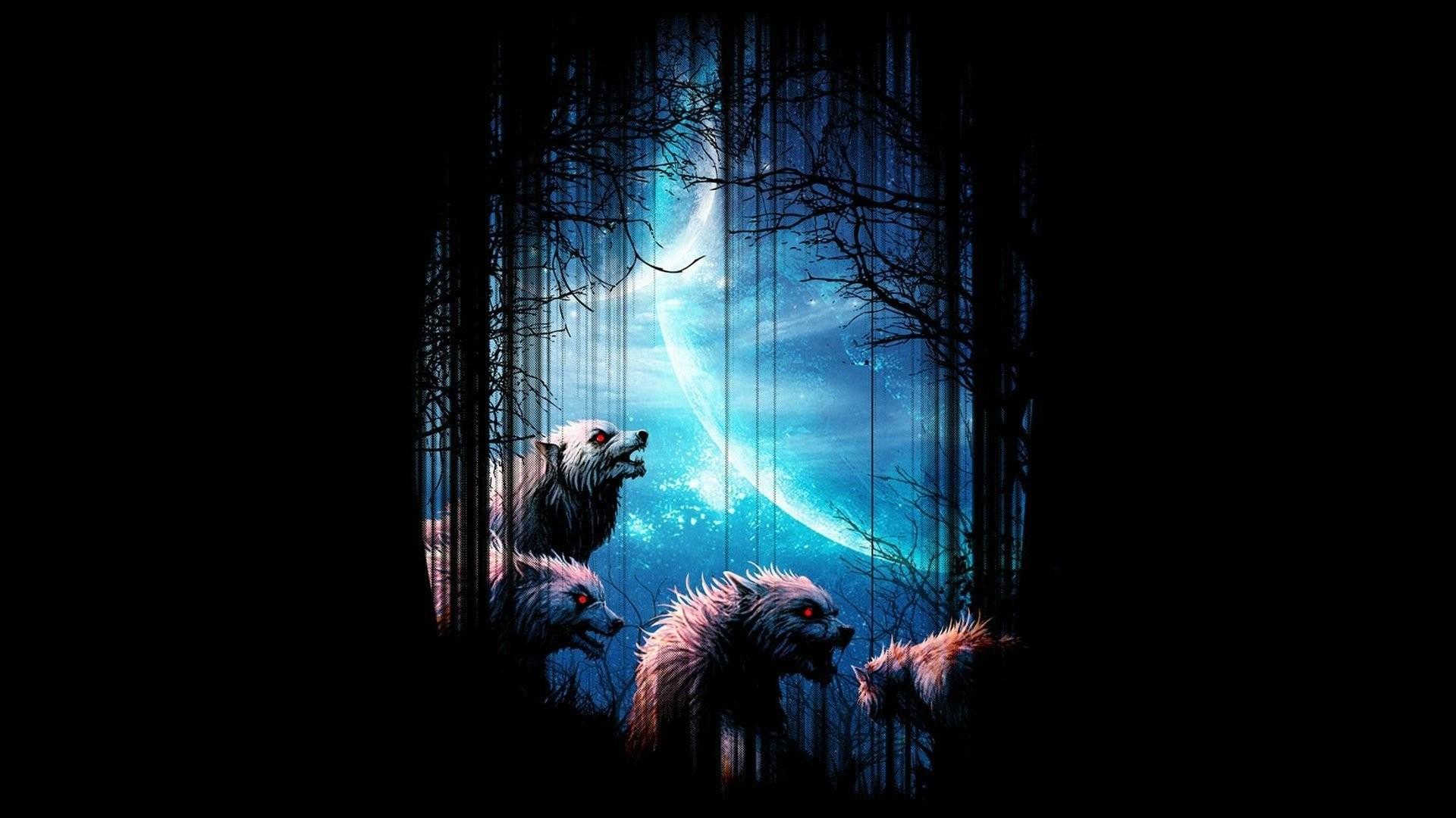 Full HD 1080p Wolf Wallpapers HD Desktop Backgrounds