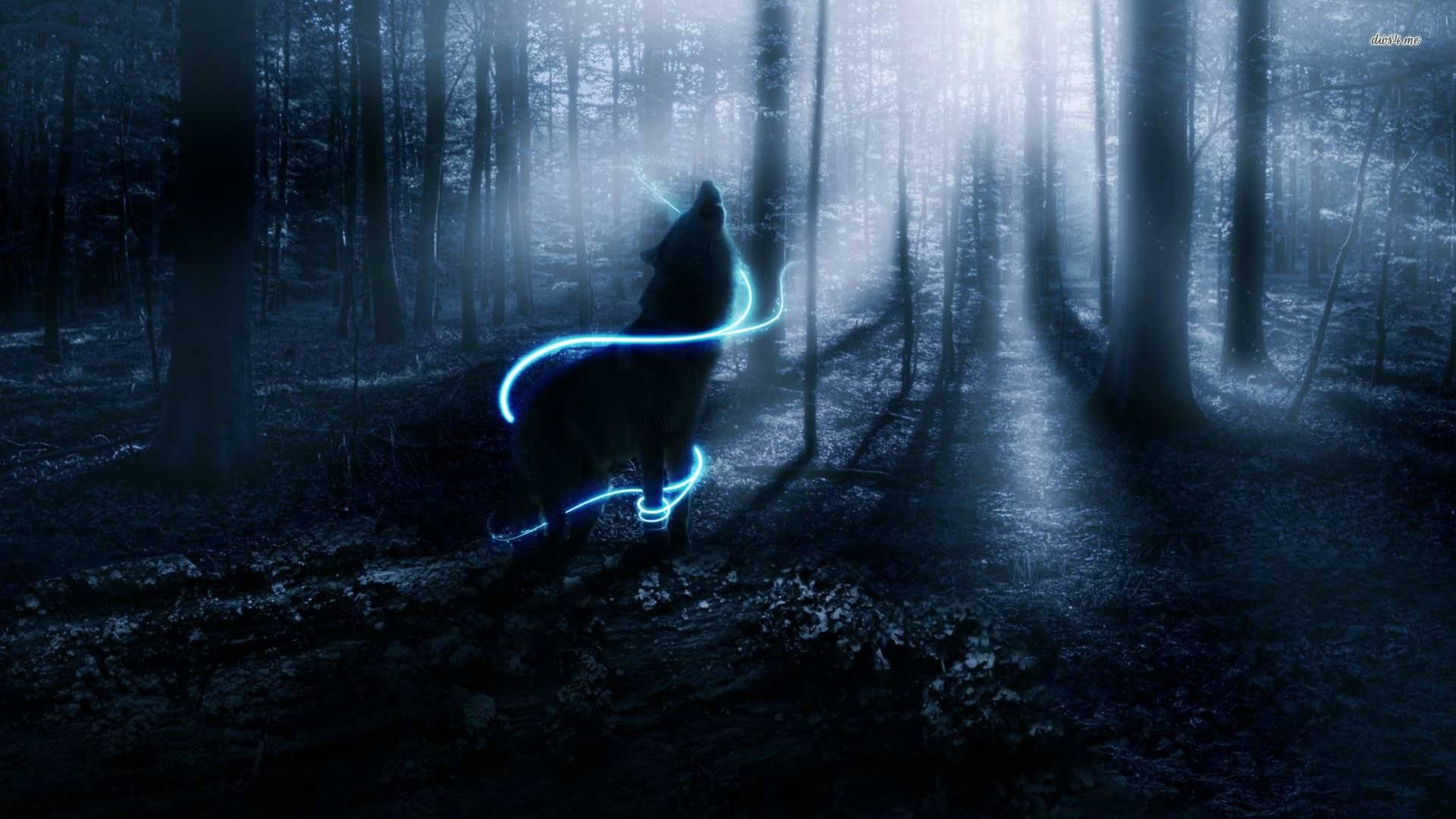Black Wolf Howling Images As Wallpaper HD