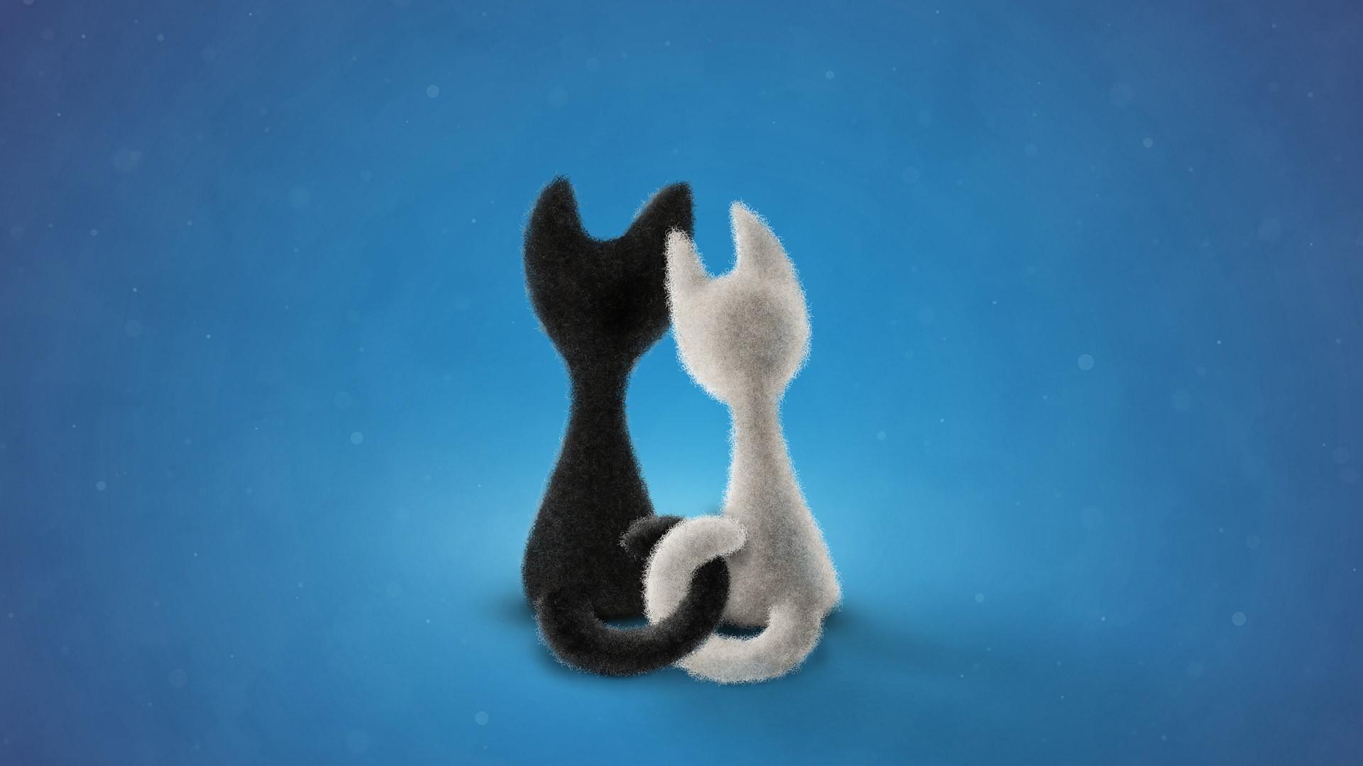 Showing post & media for Cartoon cat net | www.cartoonsmix.com