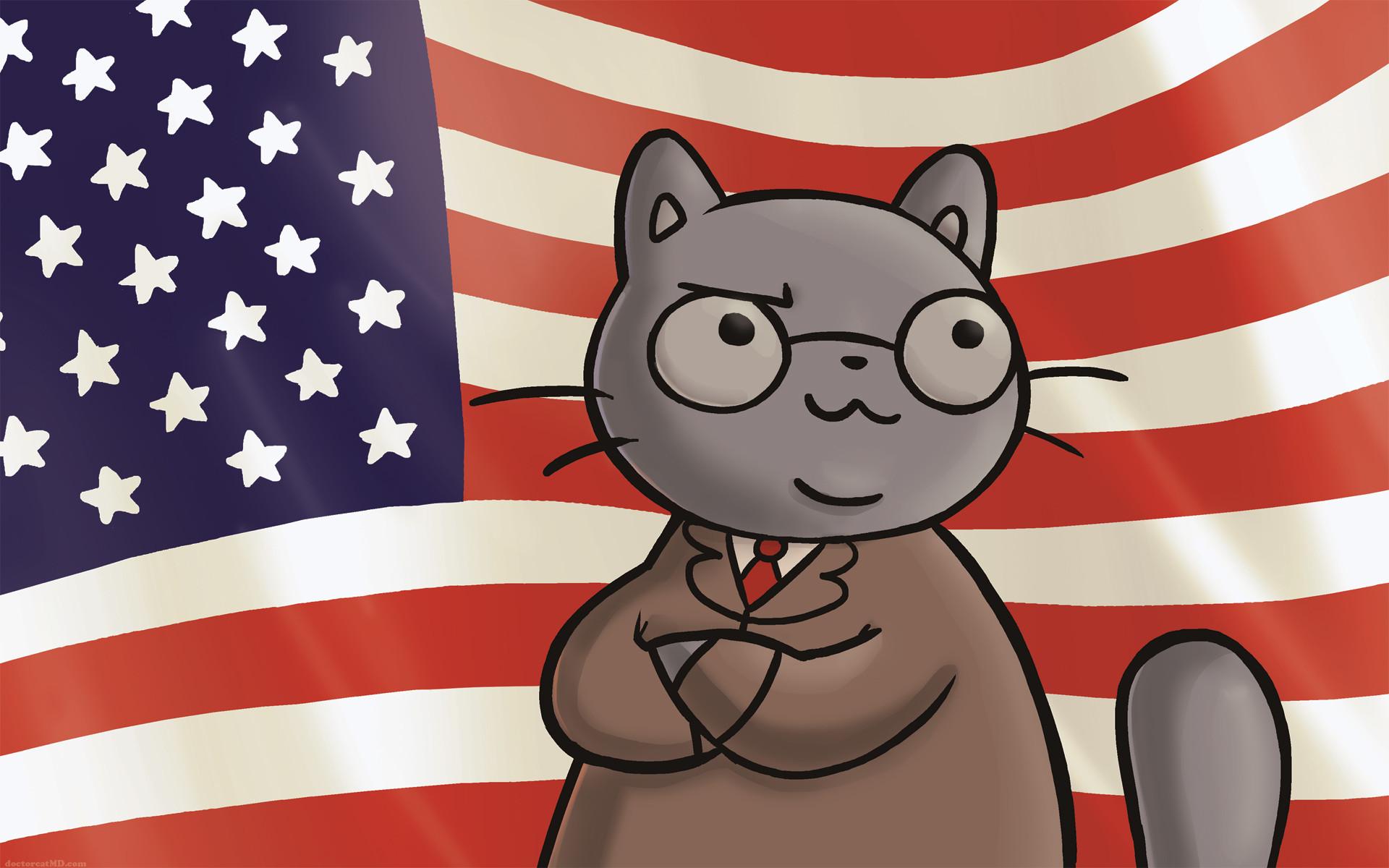 Lawyer Cat Flag Wallpaper 16×10 …