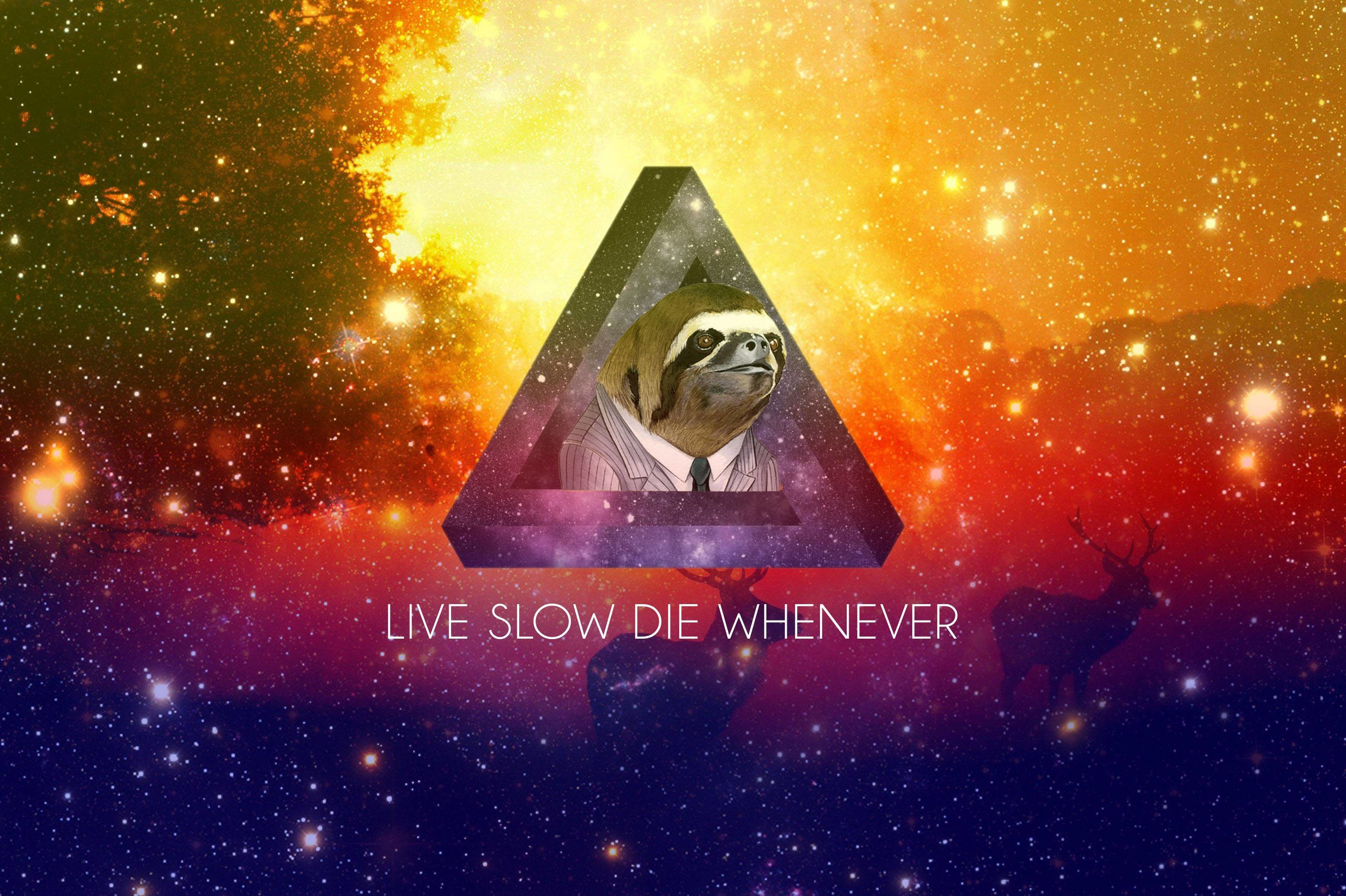 A small collection of Sloth wallpapers