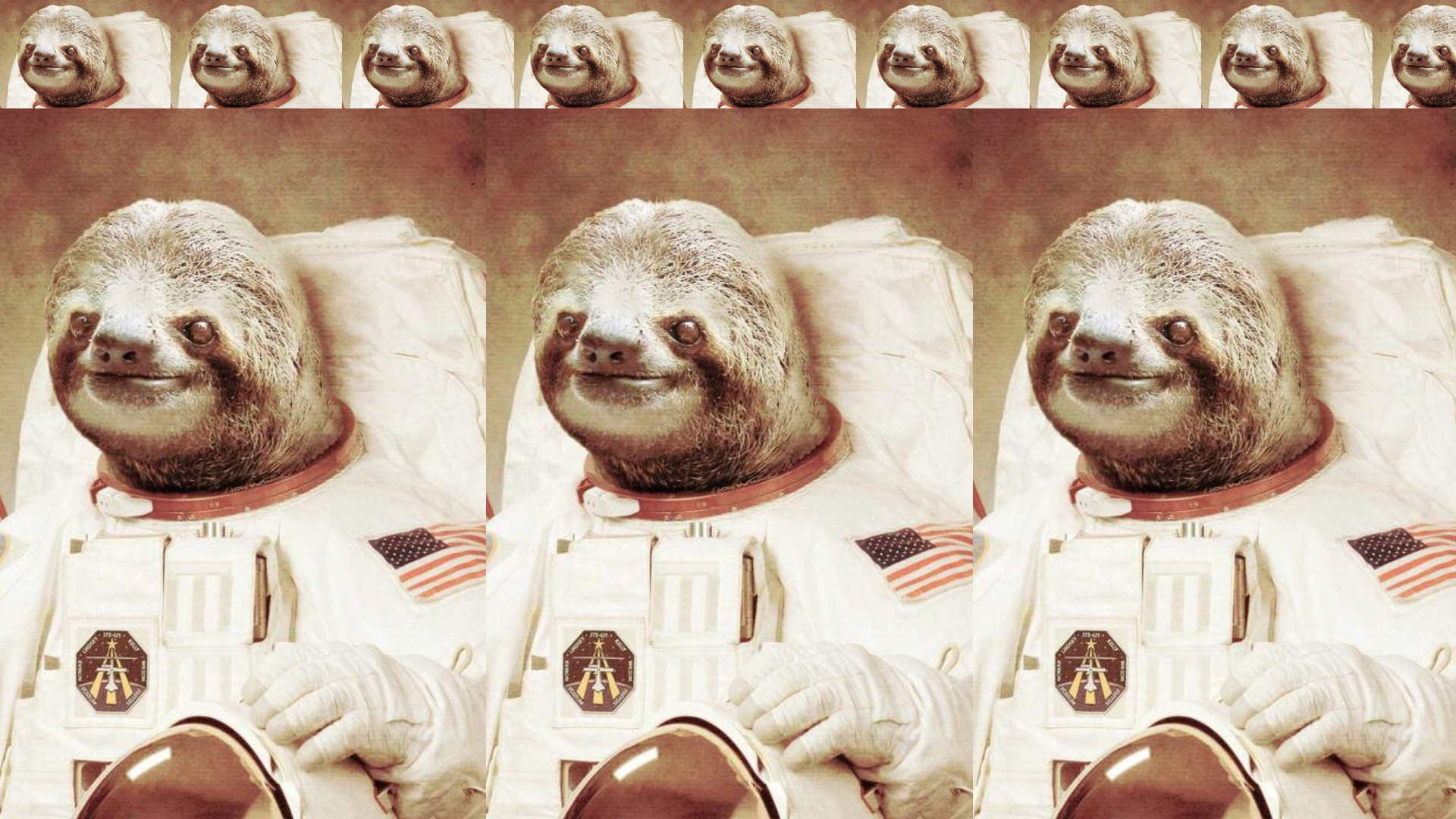 HD Widescreen Images Collection of Sloth: Ankur Gavahan