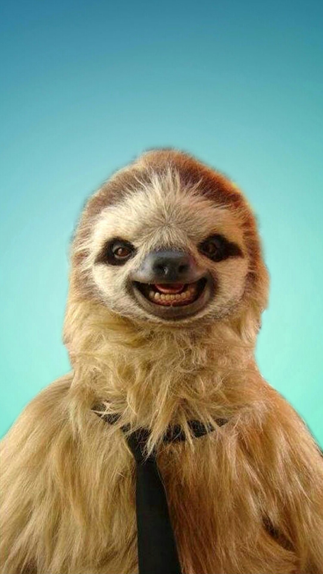 Sloth! A cute sloth phone wallpaper I made.
