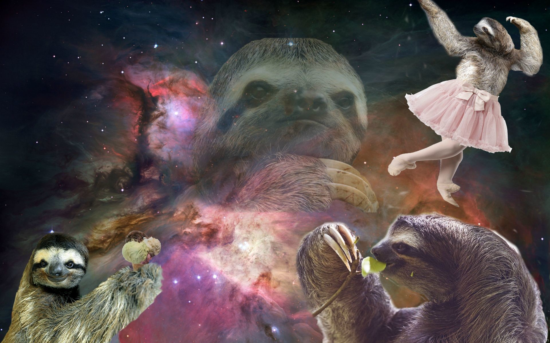 sloth wallpapers for desktop – photo #9