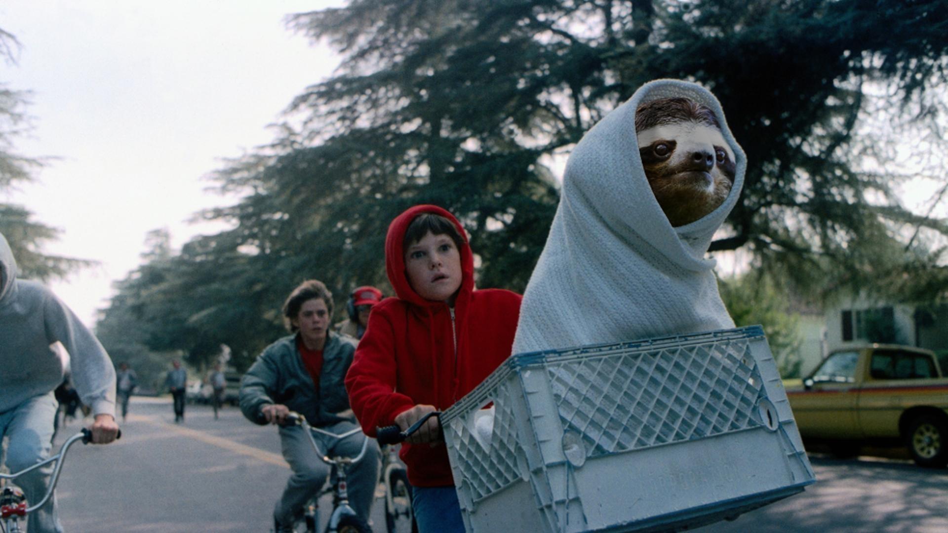 E.T. sloth wallpaper 920×1080