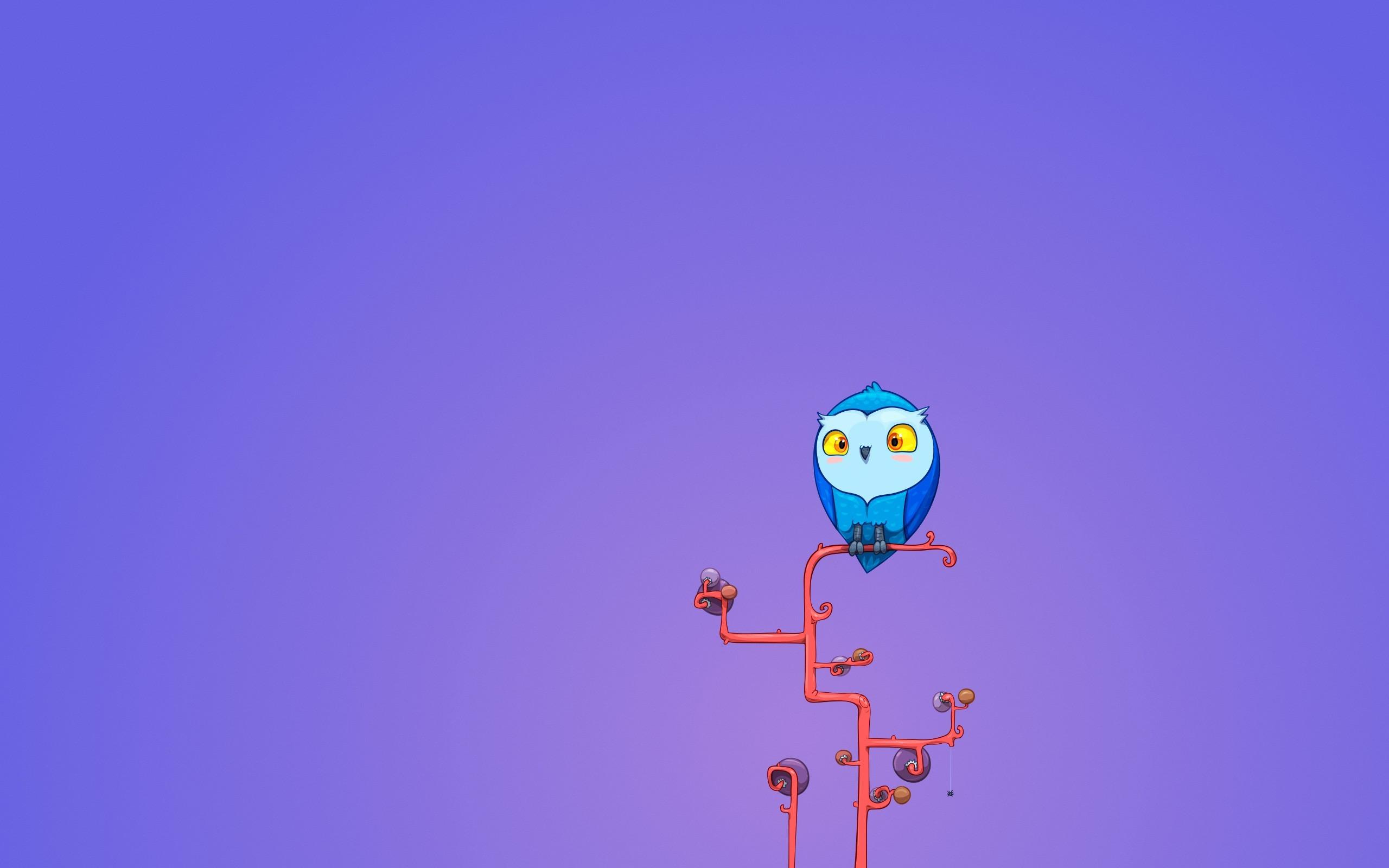 cute owl wallpapers. Â«Â«