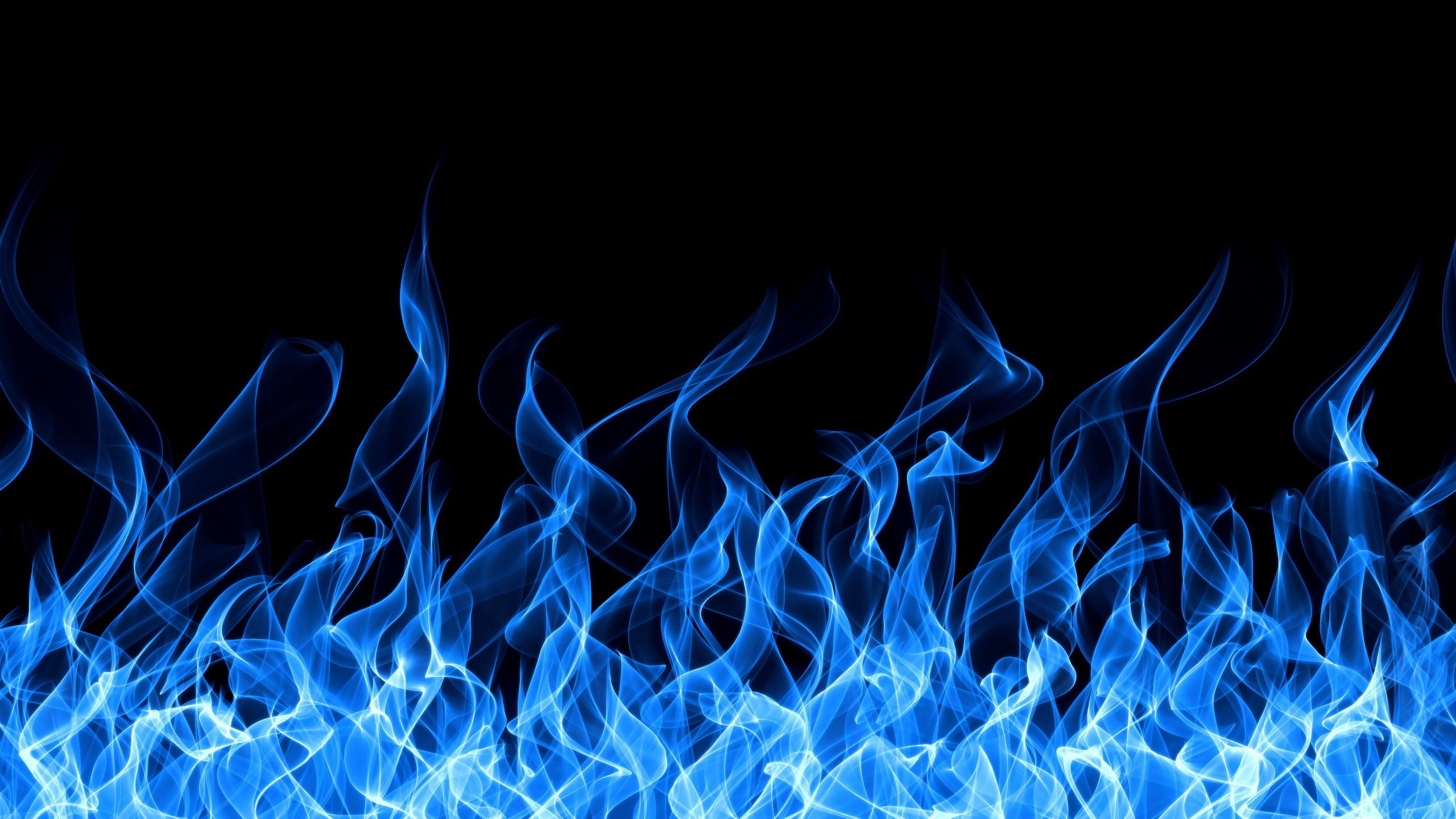 Blue fire wolf wallpaper – photo#25