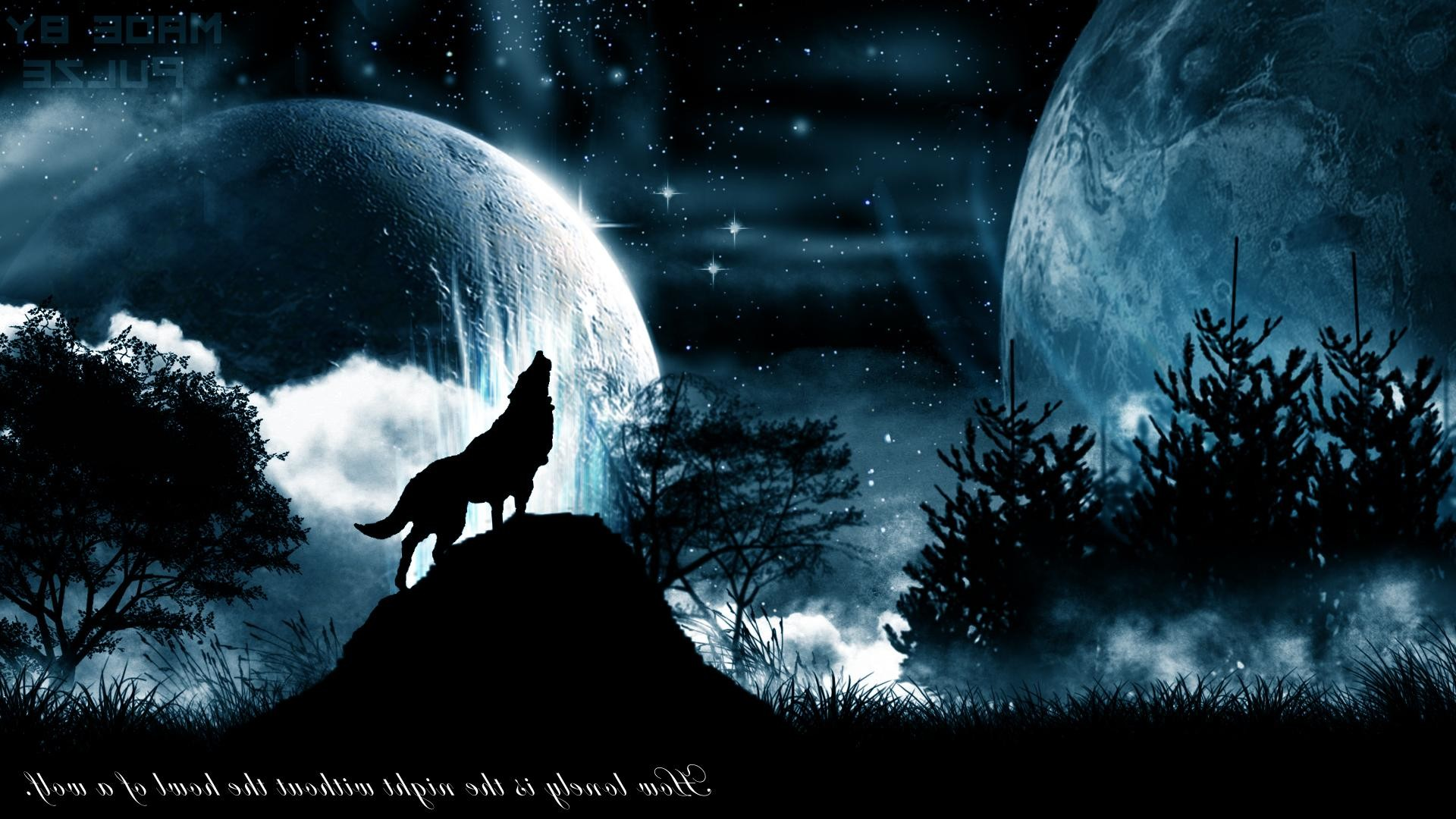 Wallpapers For > Black Wolf Backgrounds   Book Art   Pinterest   Wolf and Wolf  wallpaper