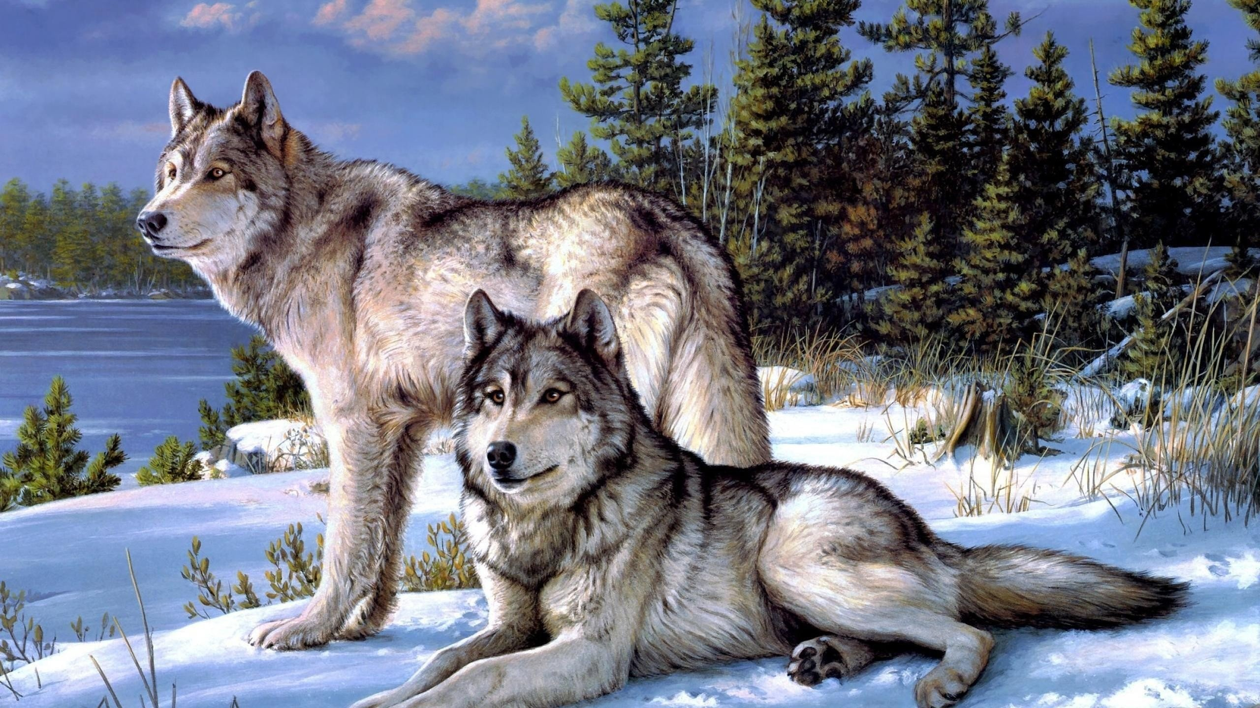 Wolves Wallpapers, px   Wallpapers PC Gallery