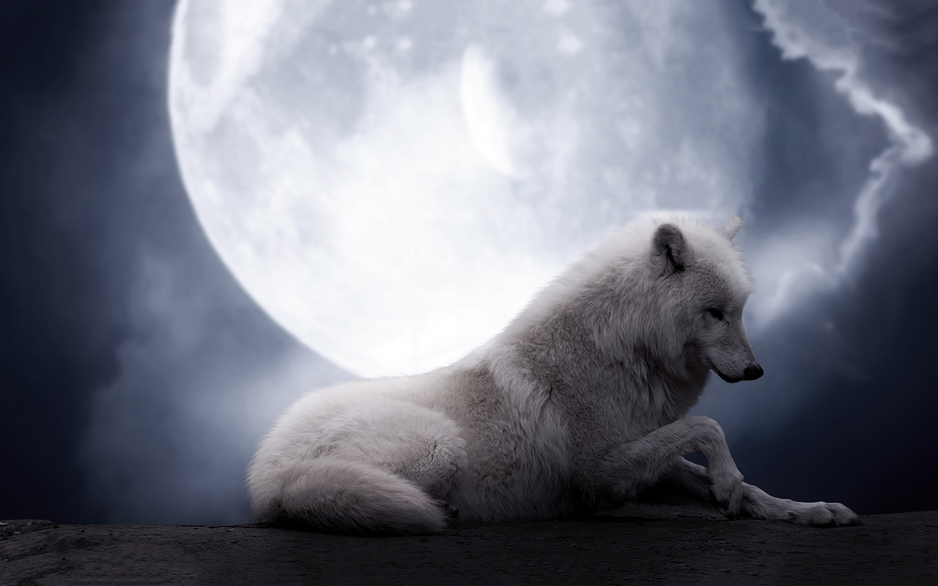 free pictures of wolves   HD The Wolf Moon Wallpaper