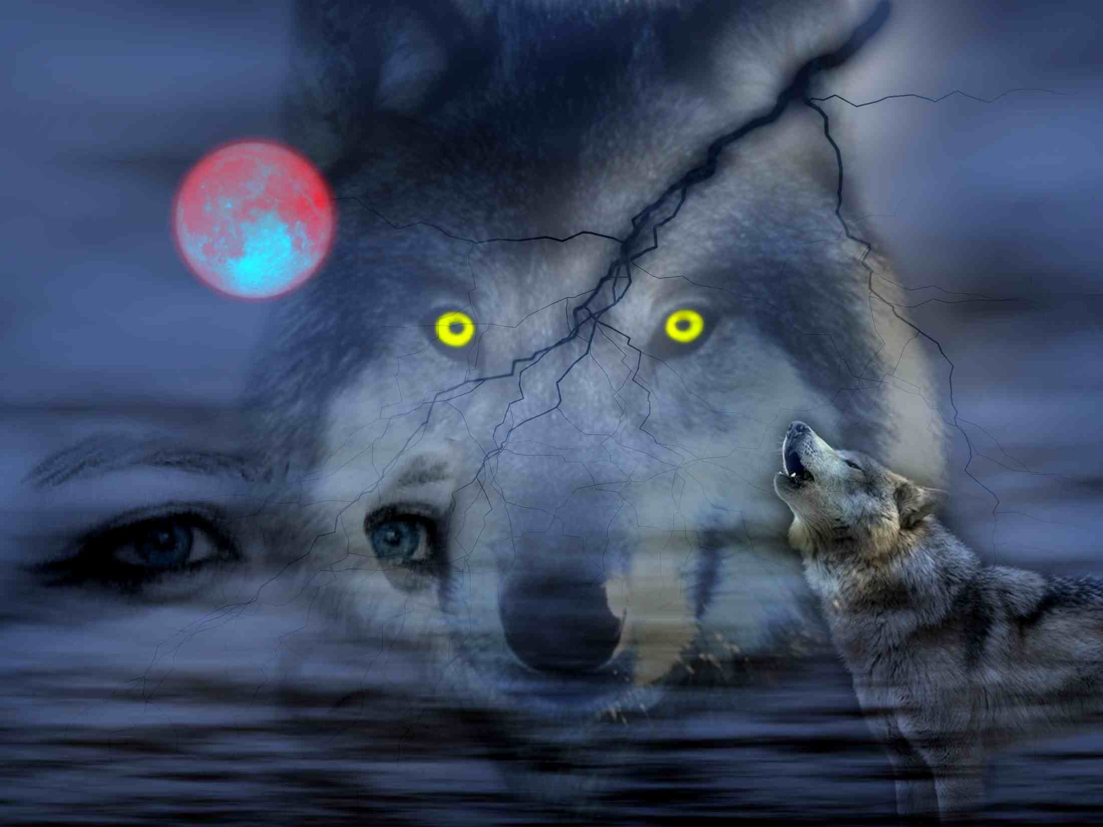 Night Of Wolves wallpaper free