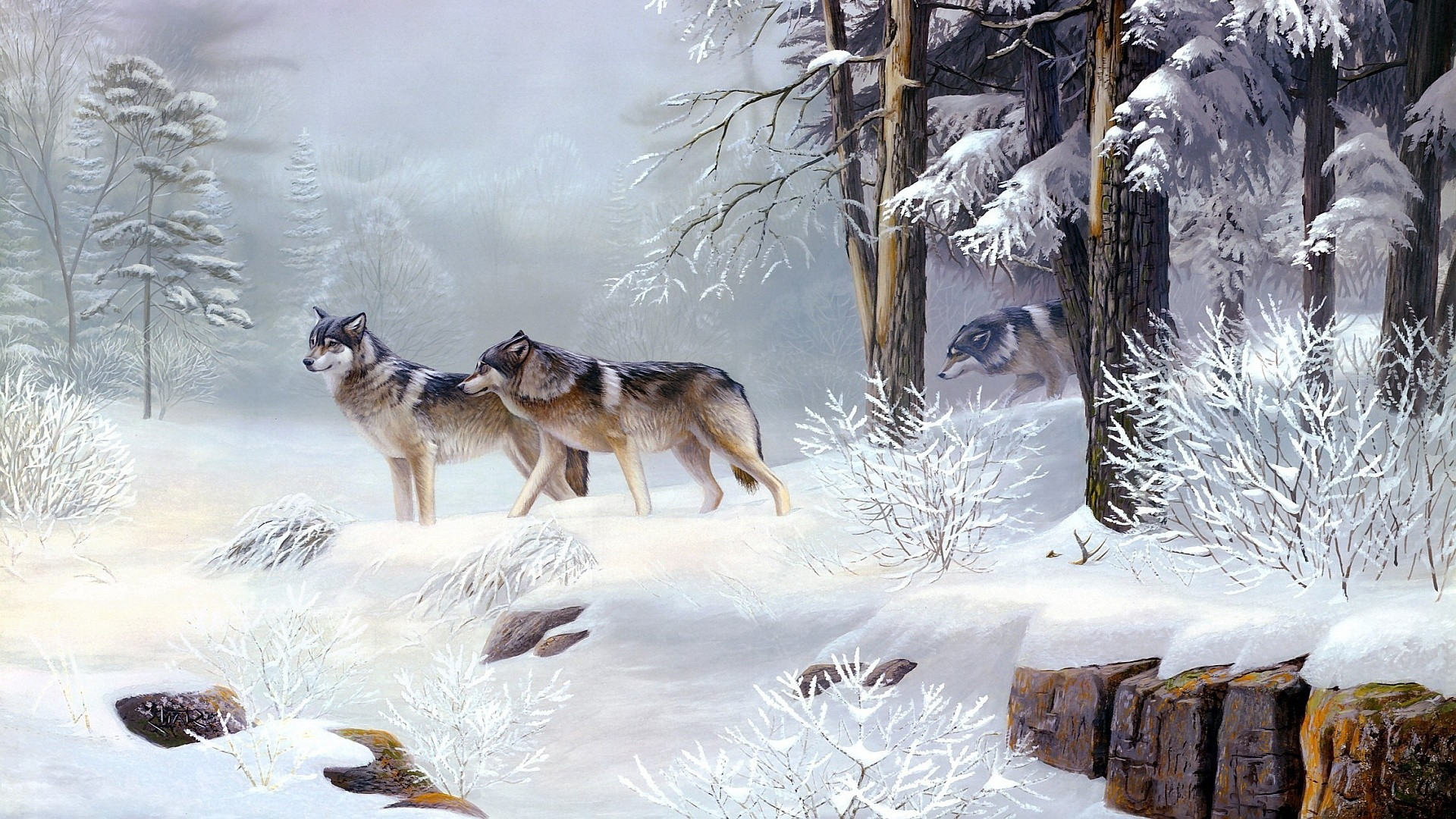 Photo of Wolves HD (p.4511180) – ZyzixuN Wallpapers