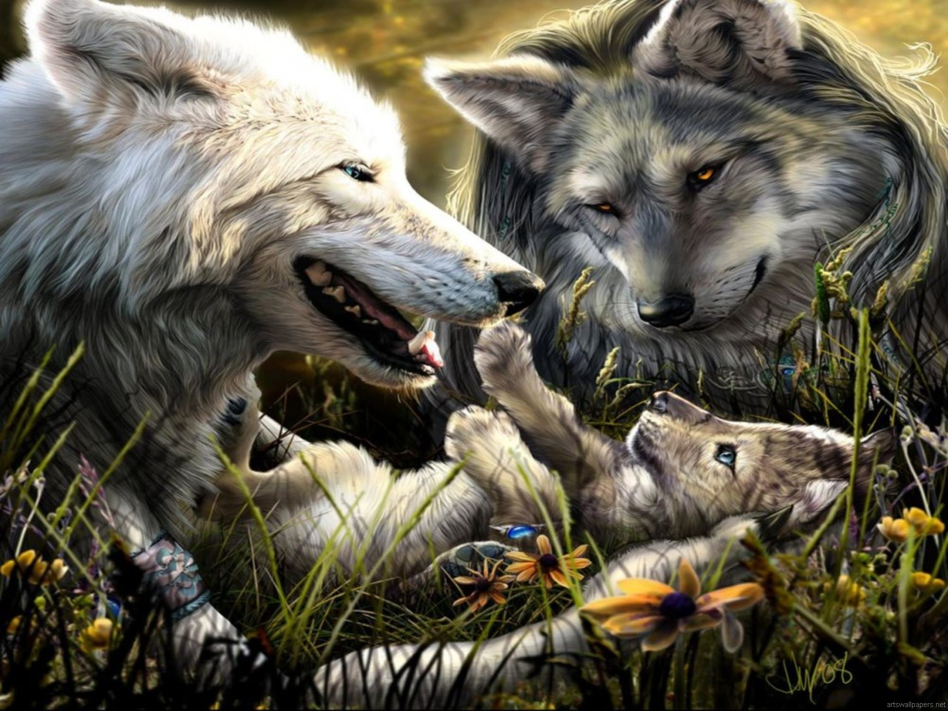 HD Wallpaper and background photos of Wolf Family for fans of Amazing Wolves  images.
