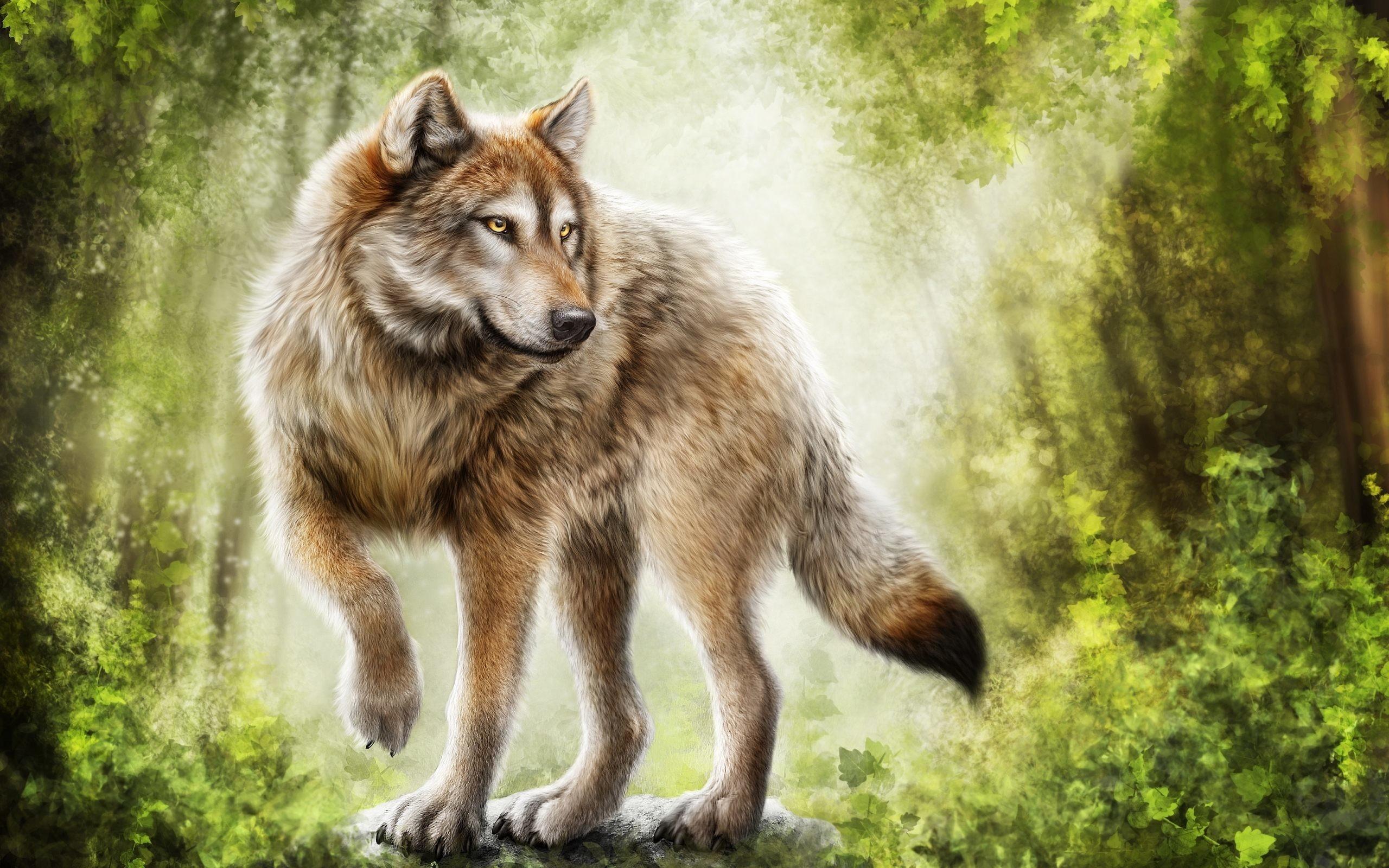 free-wallpaper-wolves