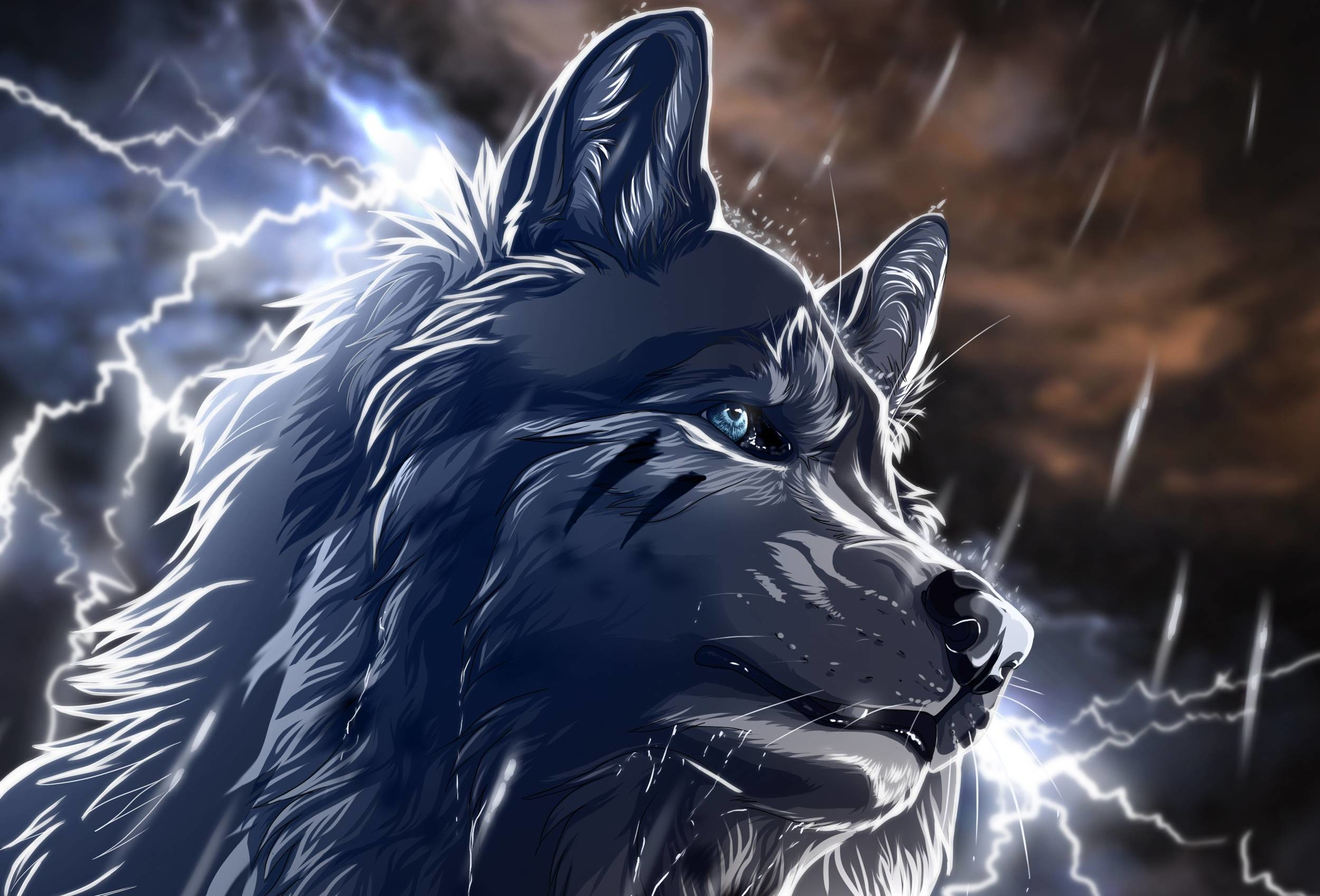 Anime wolf pictures wallpaper