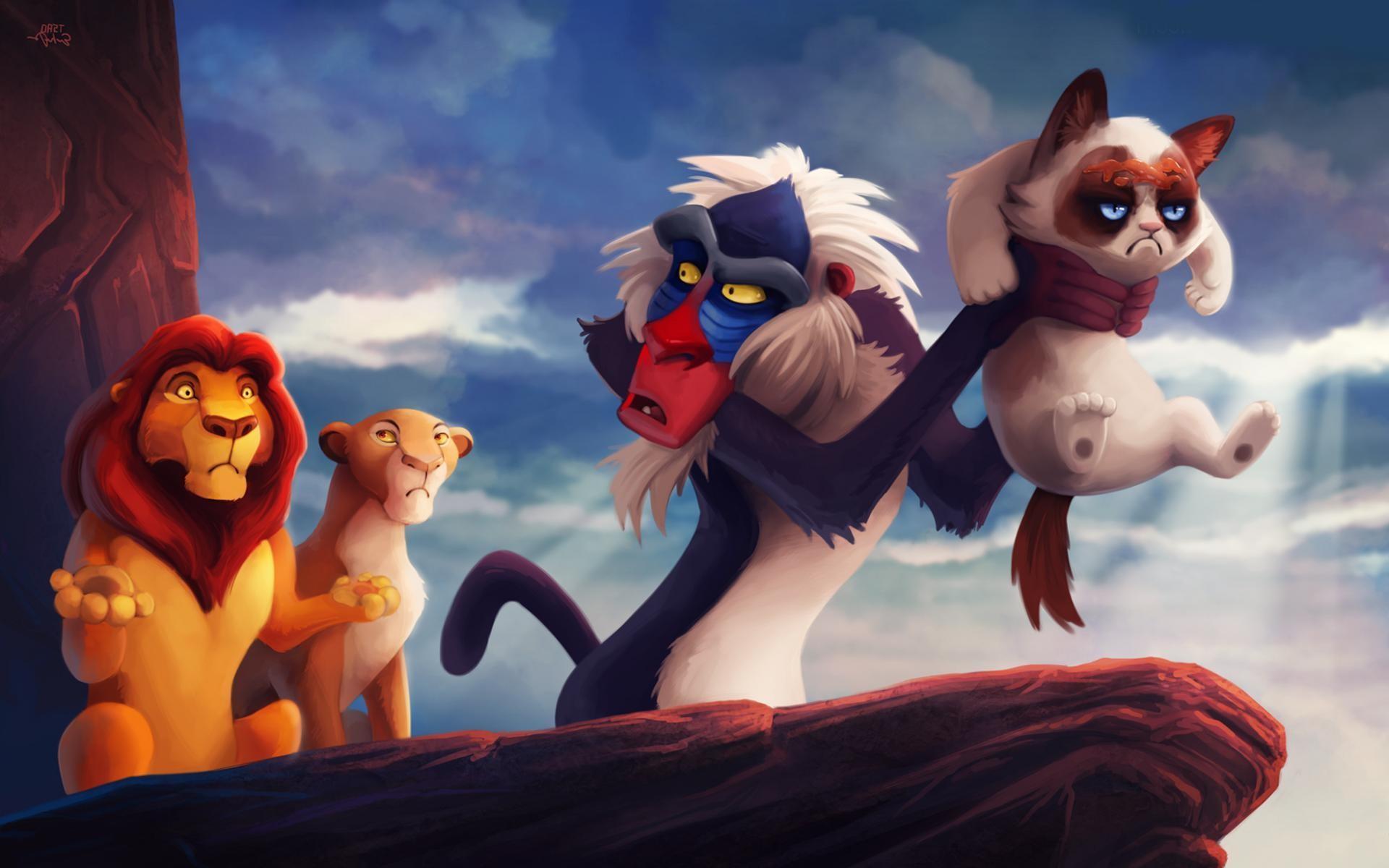 Animals Wallpaper: Grumpy Cat Wallpapers HD Resolution for HD .