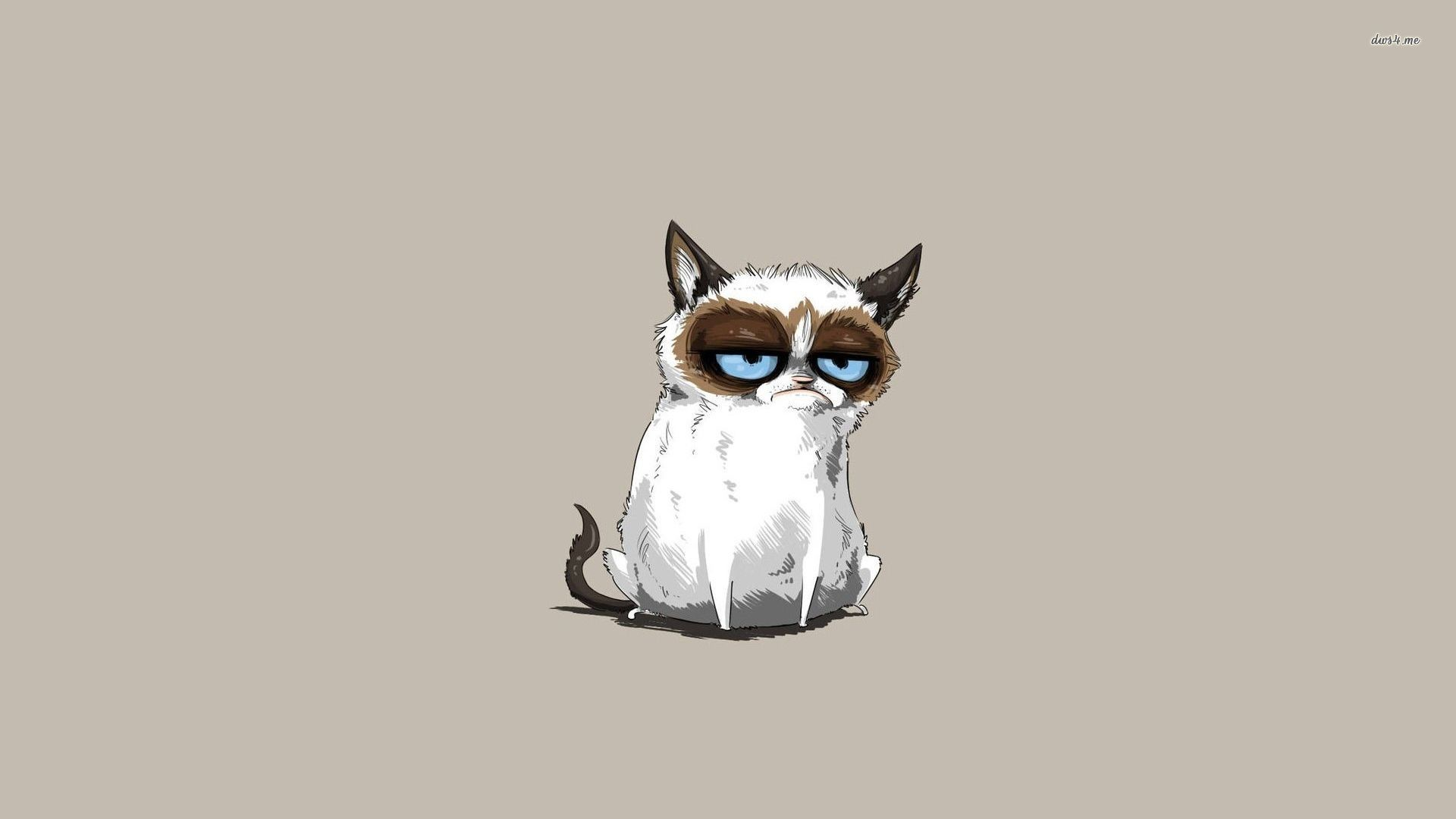 Cat · Grumpy Cat Wallpaper Background with HD …