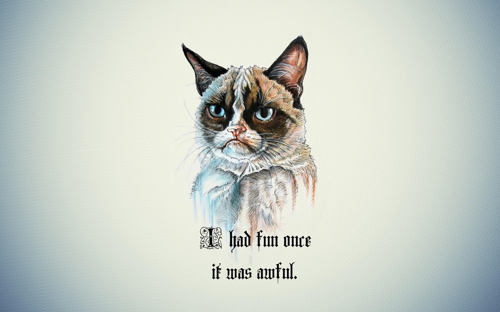 #Grumpy Cat, #quotes   Wallpaper No. 9408 – wallhaven.cc