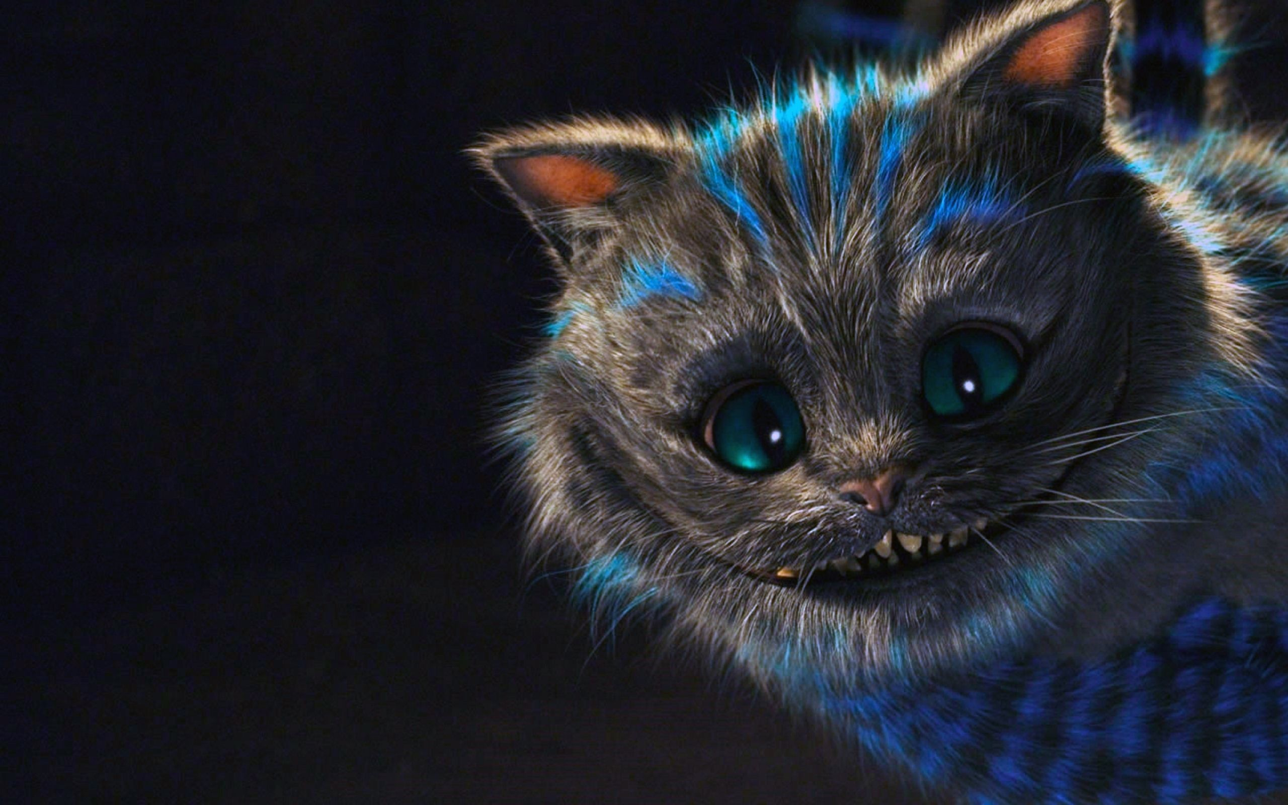 HD cheshire cat pictures tumblr.